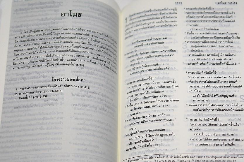 dsc07513-copy.jpg