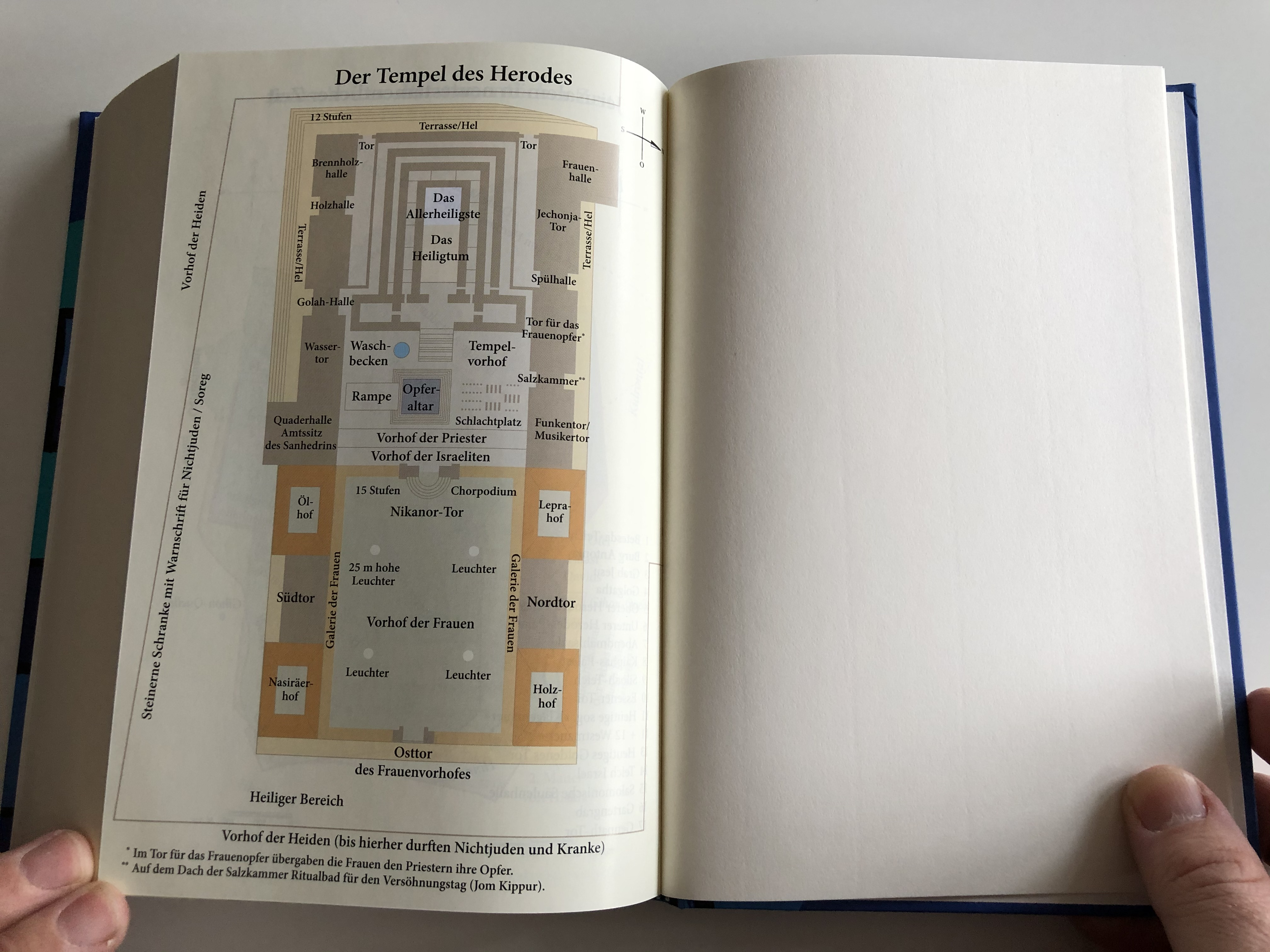 elberfelder-bibel-motiv-kirchenfenster-fisch-bible-in-german-language-13.jpg