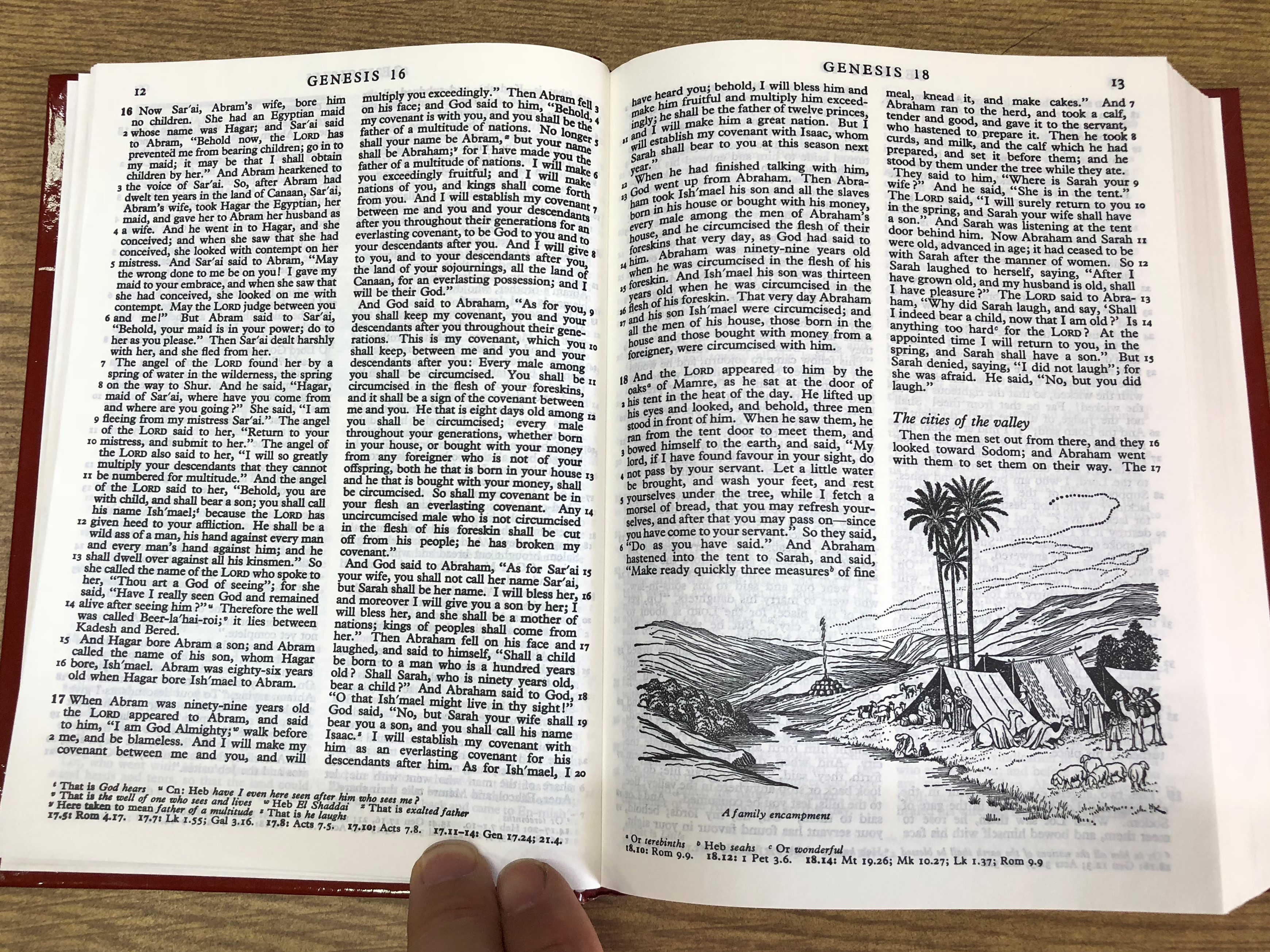 english-bible-revised-standard-version-rsv-burg-6-.jpg