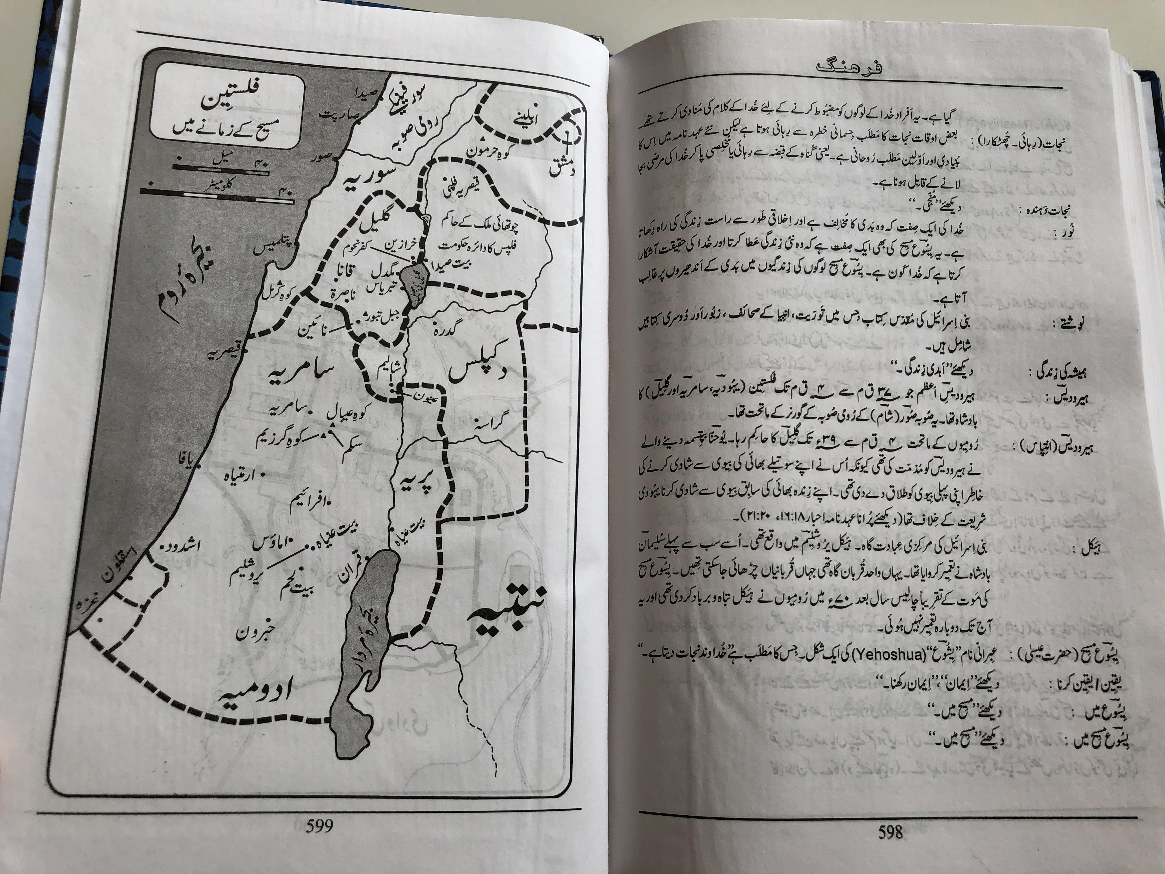 english-urdu-diaglot-bilingual-new-testament-10-.jpg
