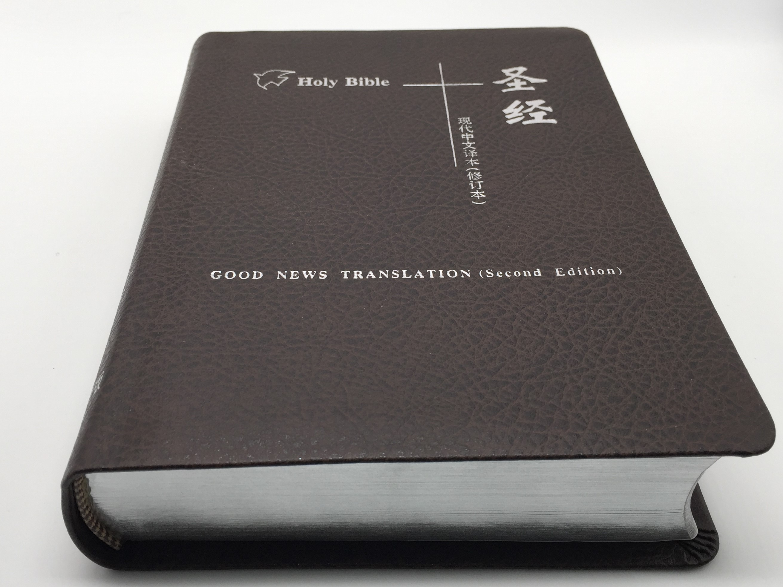 gnb-tcv-2-.jpg