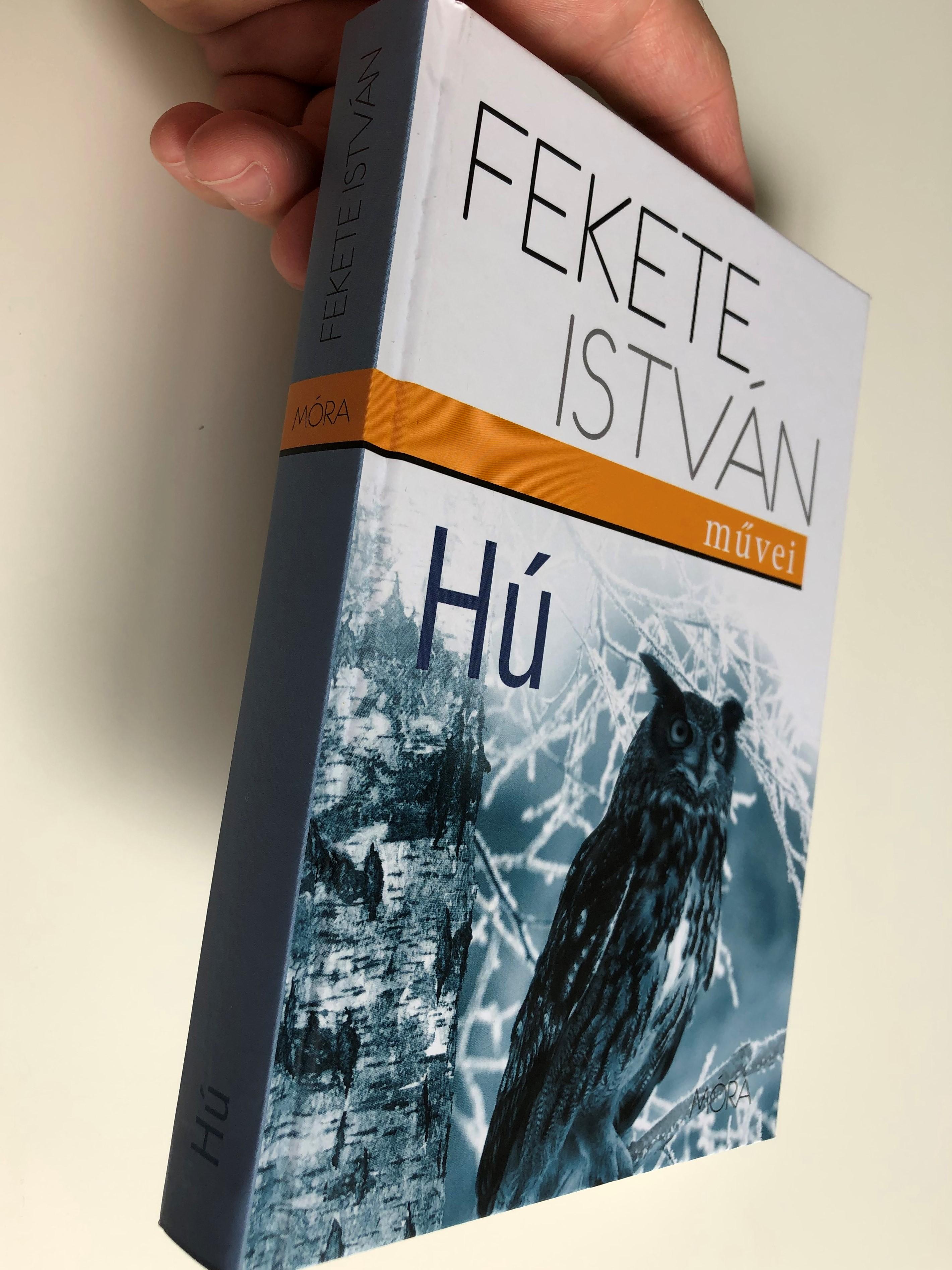h-by-fekete-istv-n-illustrations-by-bakai-piroska-m-ra-kiad-2013-an-owl-s-novel-by-famous-hungarian-writer-istv-n-fekete-2-.jpg
