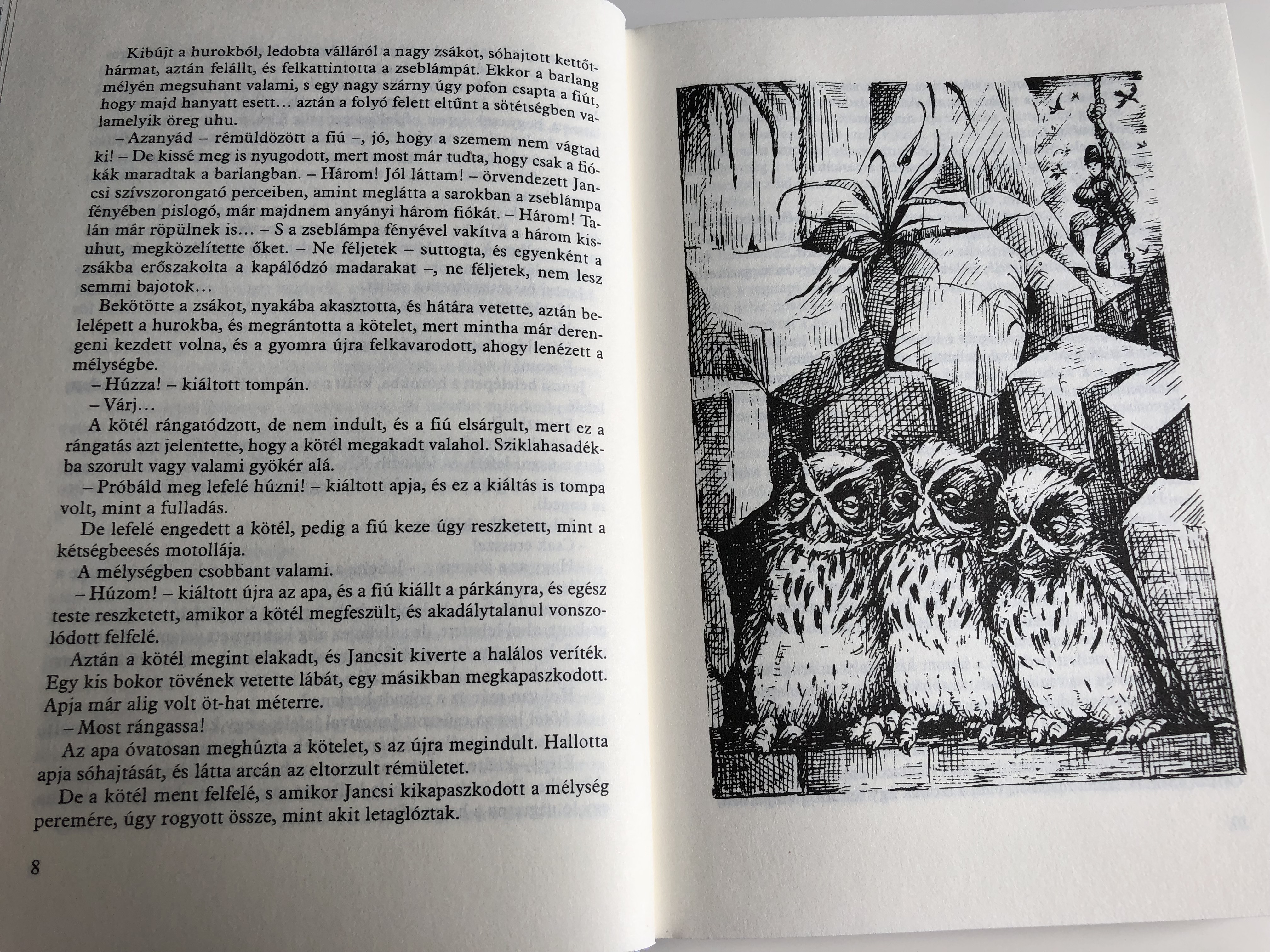 h-by-fekete-istv-n-illustrations-by-bakai-piroska-m-ra-kiad-2013-an-owl-s-novel-by-famous-hungarian-writer-istv-n-fekete-5-.jpg