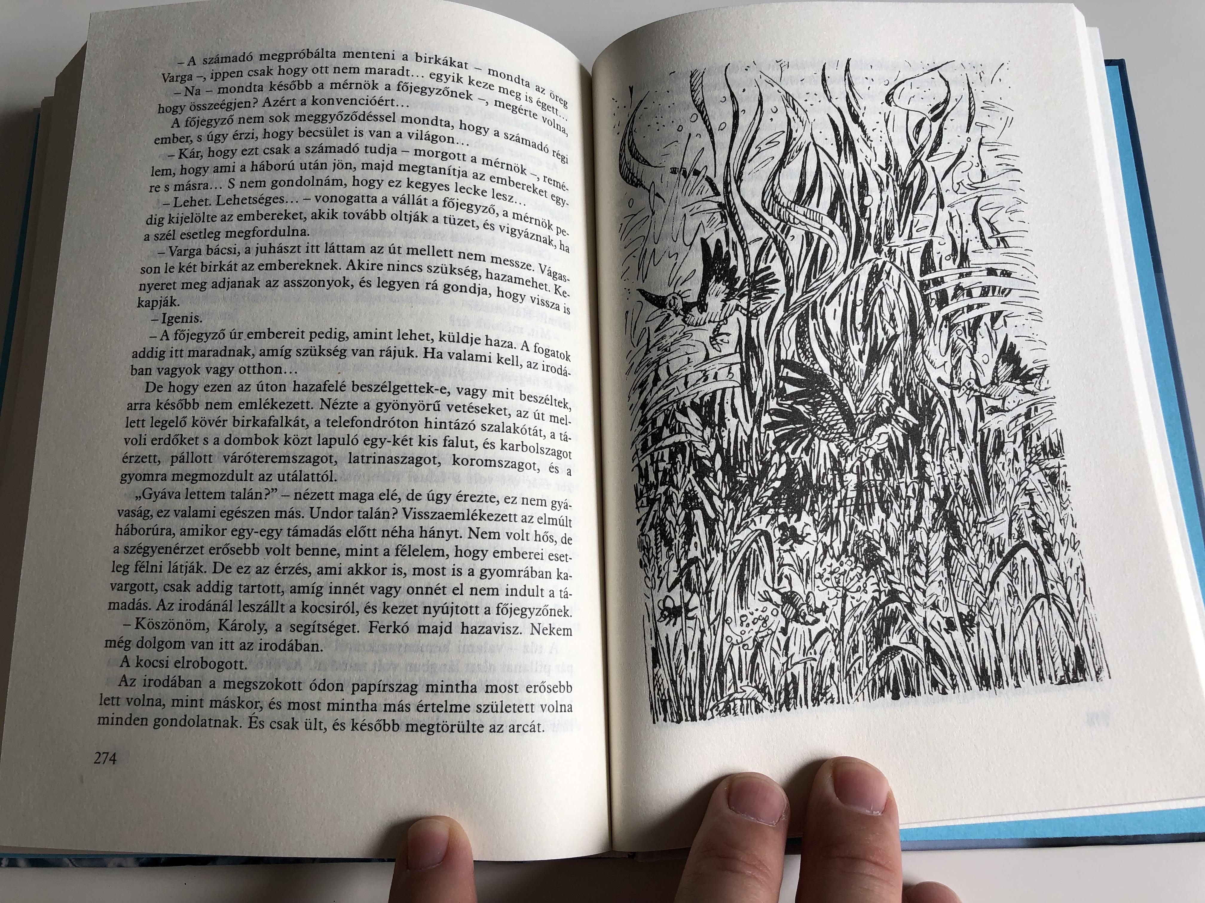h-by-fekete-istv-n-illustrations-by-bakai-piroska-m-ra-kiad-2013-an-owl-s-novel-by-famous-hungarian-writer-istv-n-fekete-8-.jpg