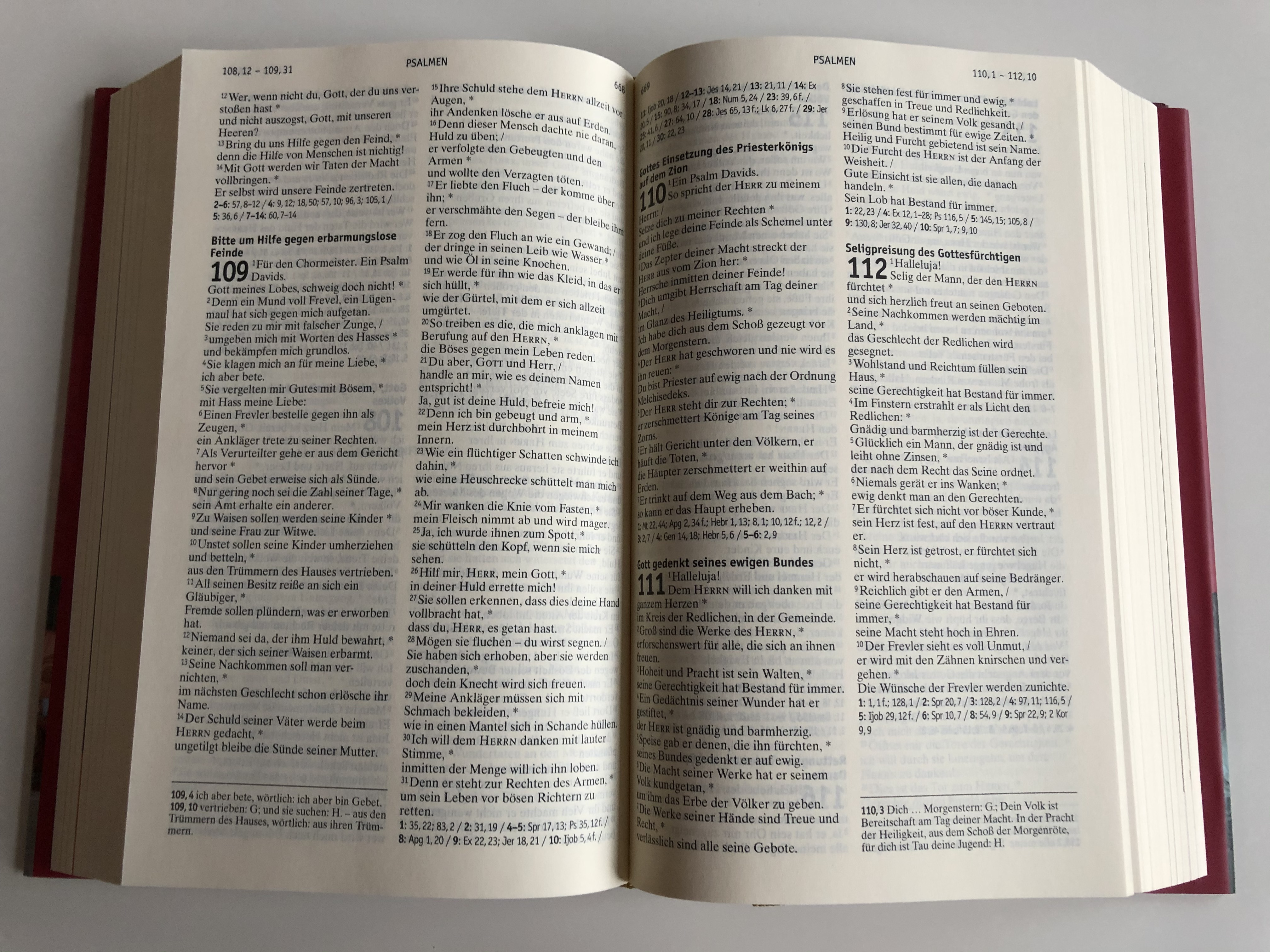 hausbibel-german-language-family-bible-einheits-bersetzung-12.jpg