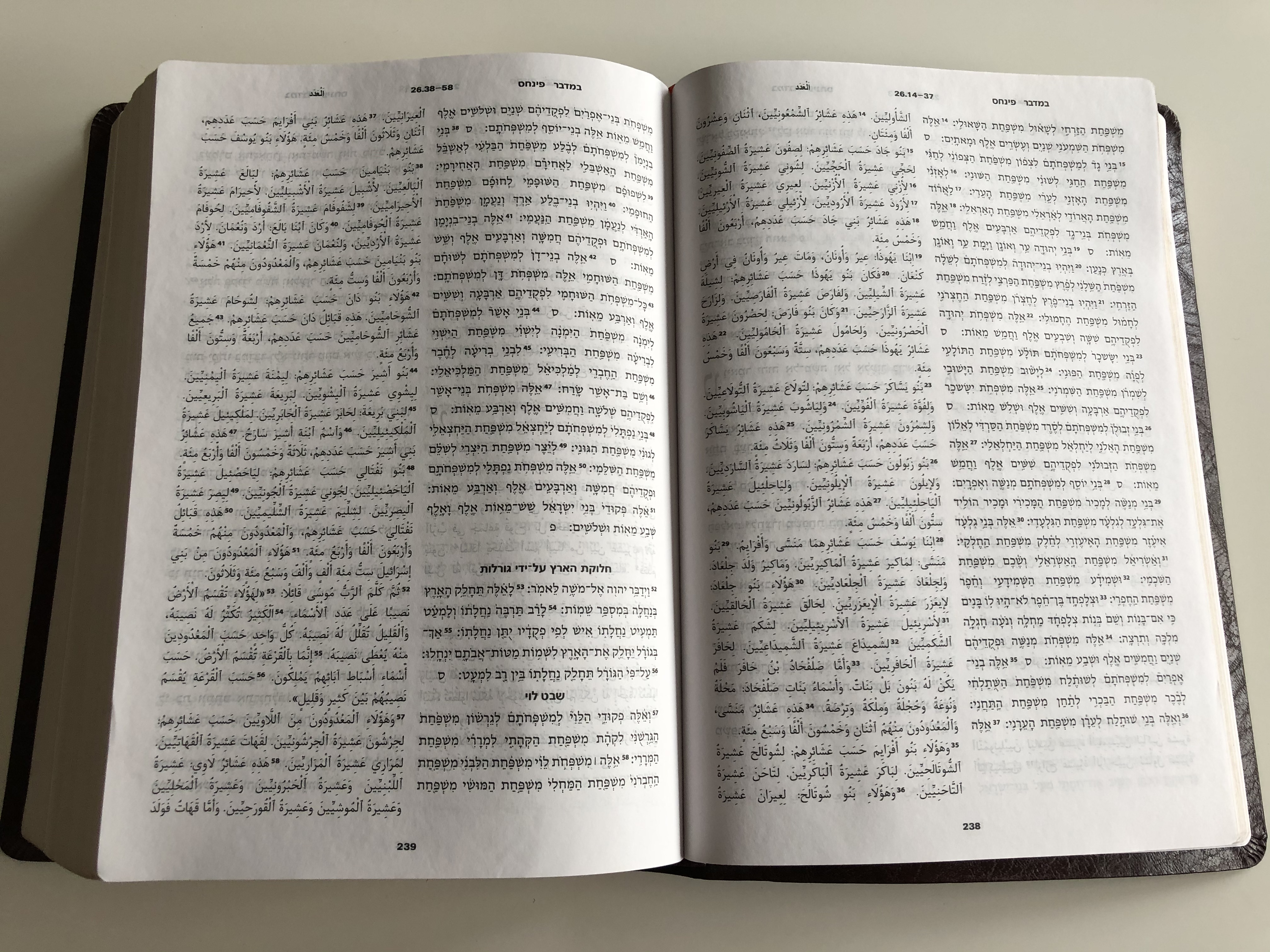 holy-bible-in-hebrew-and-arabic-9.jpg