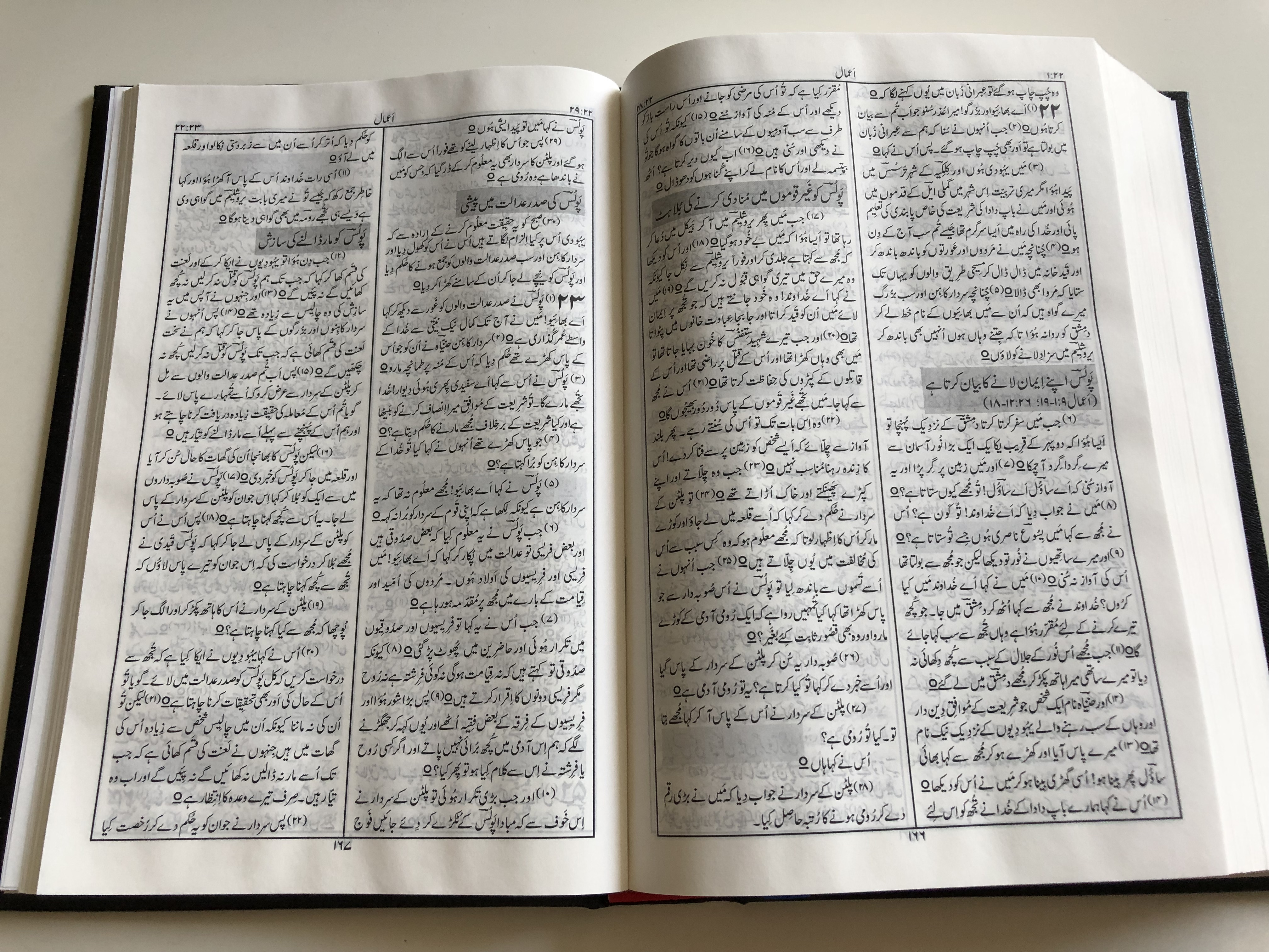holy-bible-in-urdu-language-revised-version-pakistan-bible-society-2019-hardcover-black-15-.jpg