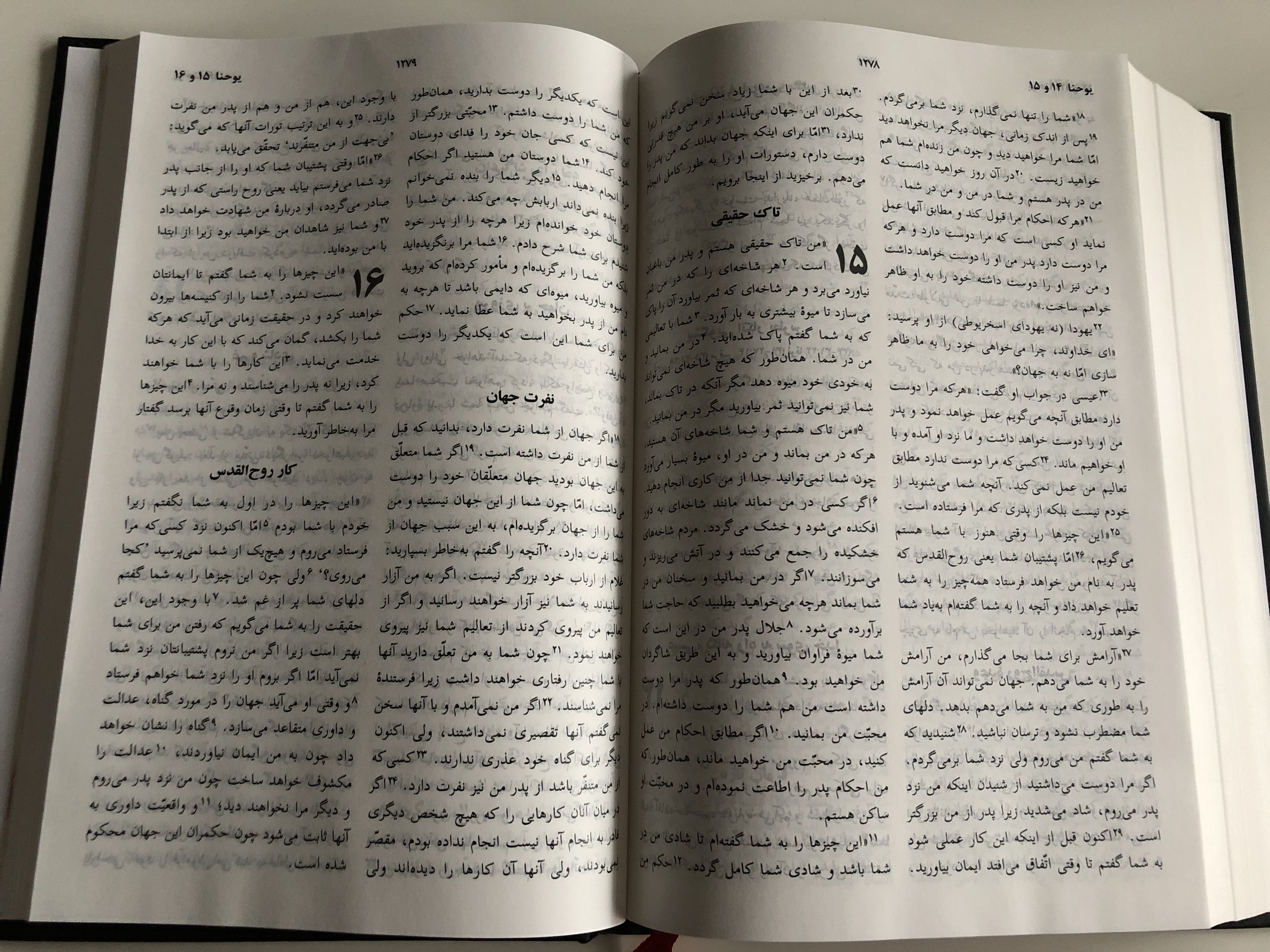 holy-bible-today-s-persian-version-farsi-united-bible-societies-2009-9-.jpg
