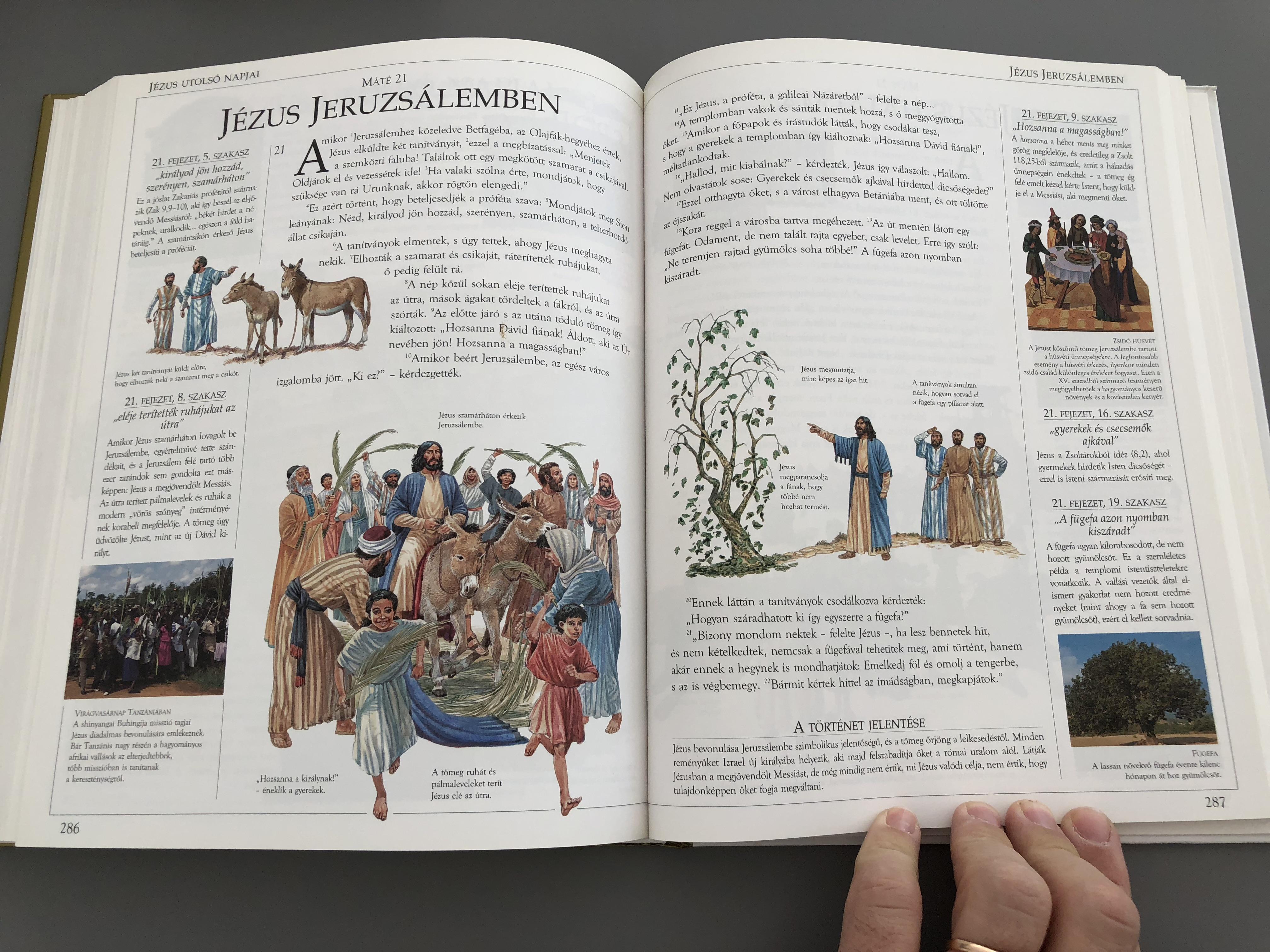 hungarian-illustrated-family-bible-11-.jpg