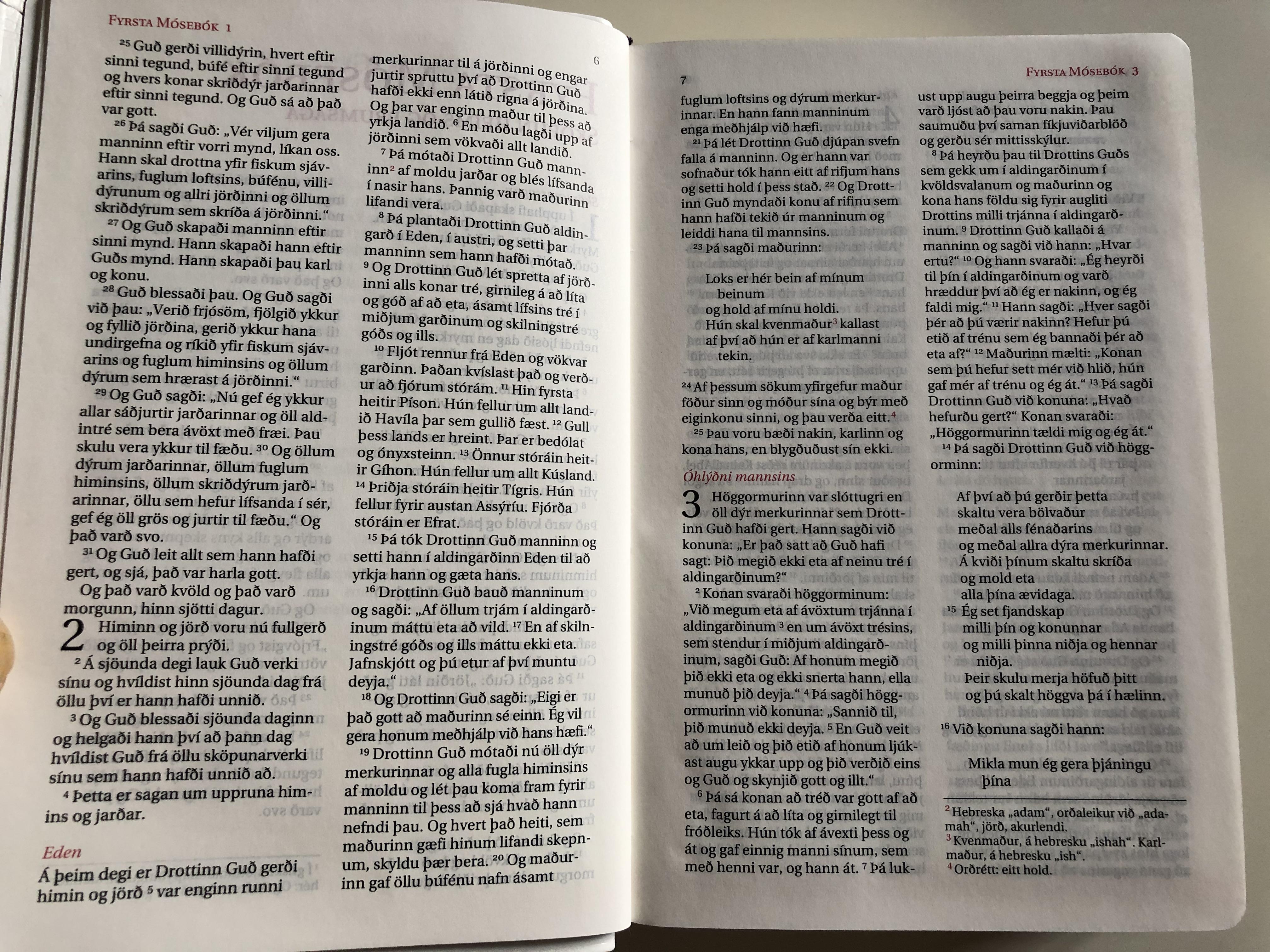 icelandic-catholic-bible-bibl-an-gamla-testamenti-samt-ap-kr-fu-b-kunum-n-ja-testamenti-13.jpg