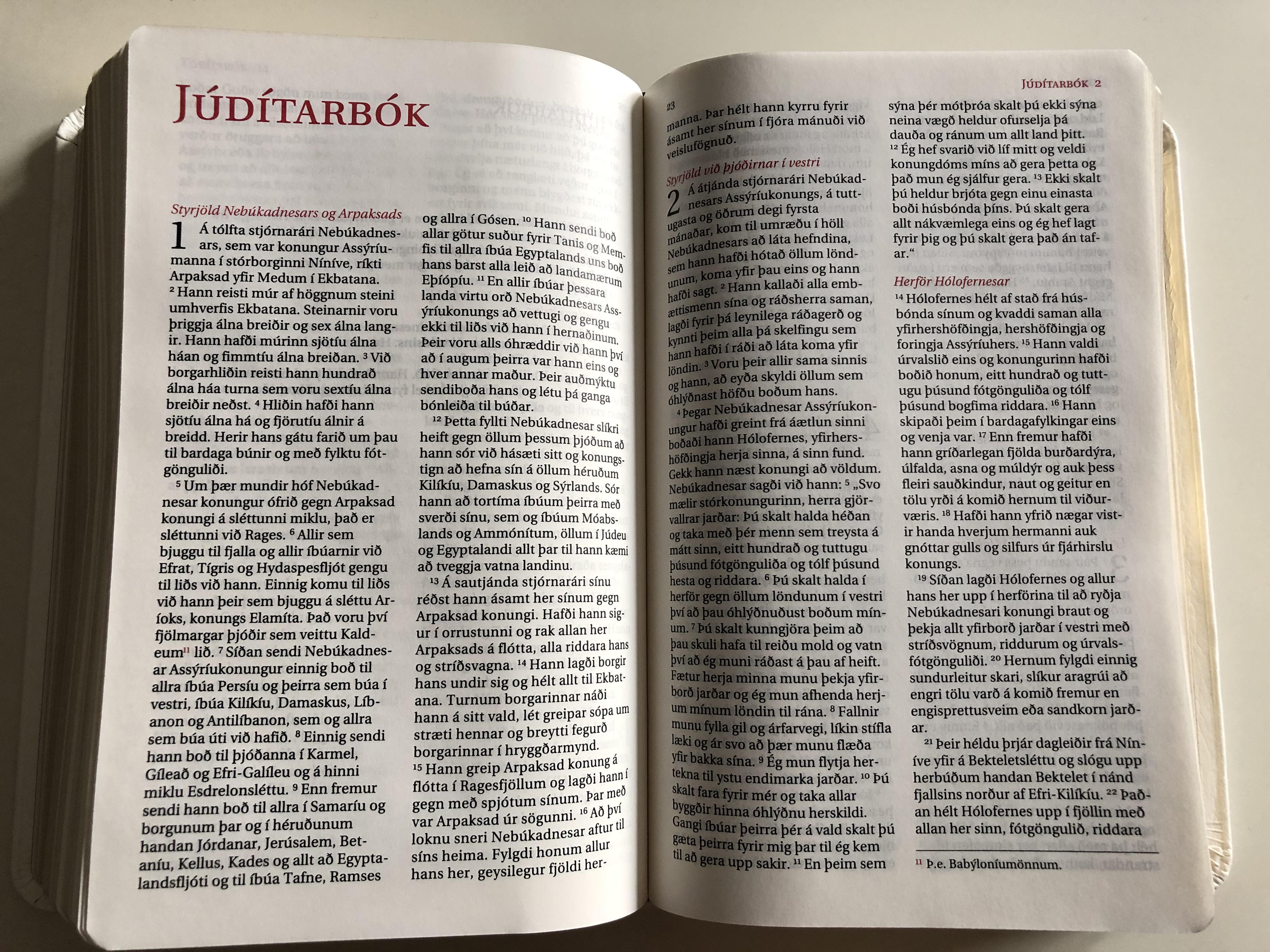 icelandic-catholic-bible-bibl-an-gamla-testamenti-samt-ap-kr-fu-b-kunum-n-ja-testamenti-20.jpg