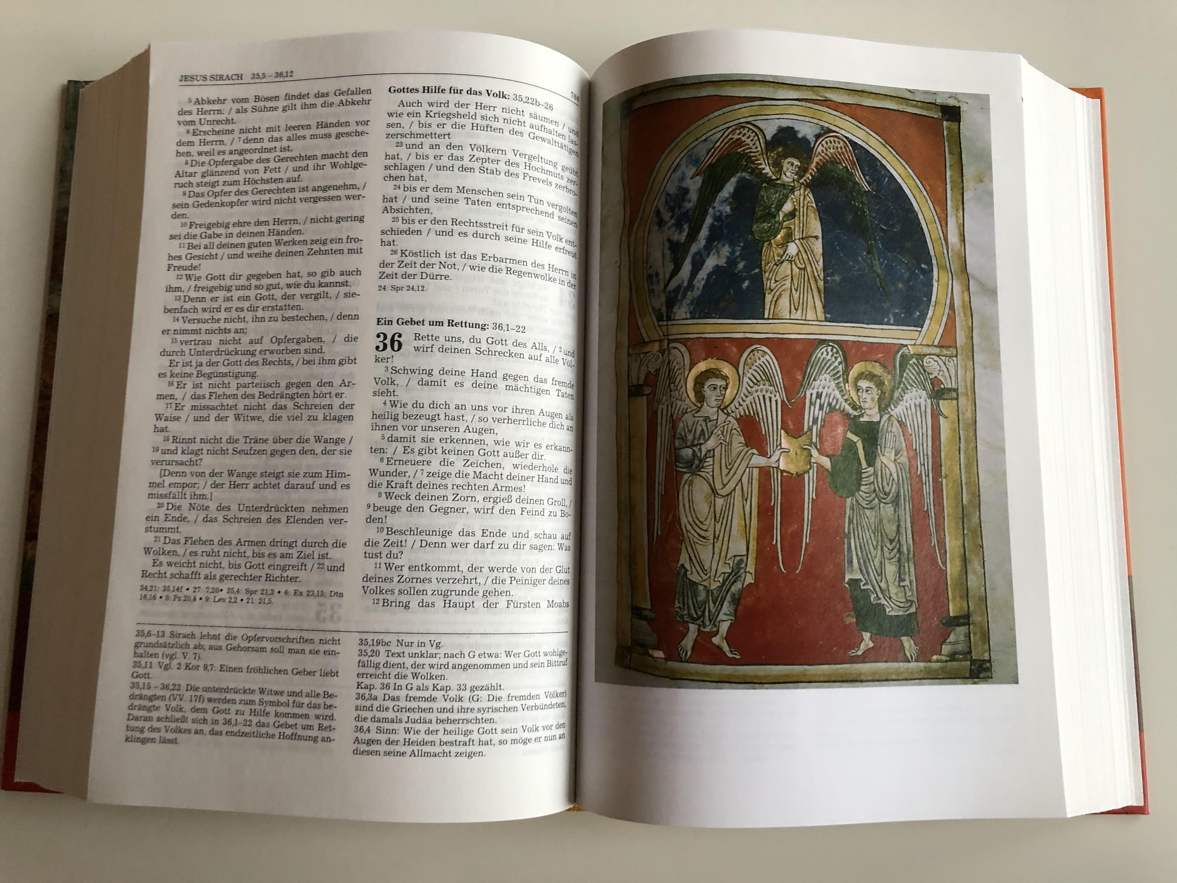 illustrated-german-bible-die-bibel-mit-bildern-von-engeln-11.jpg