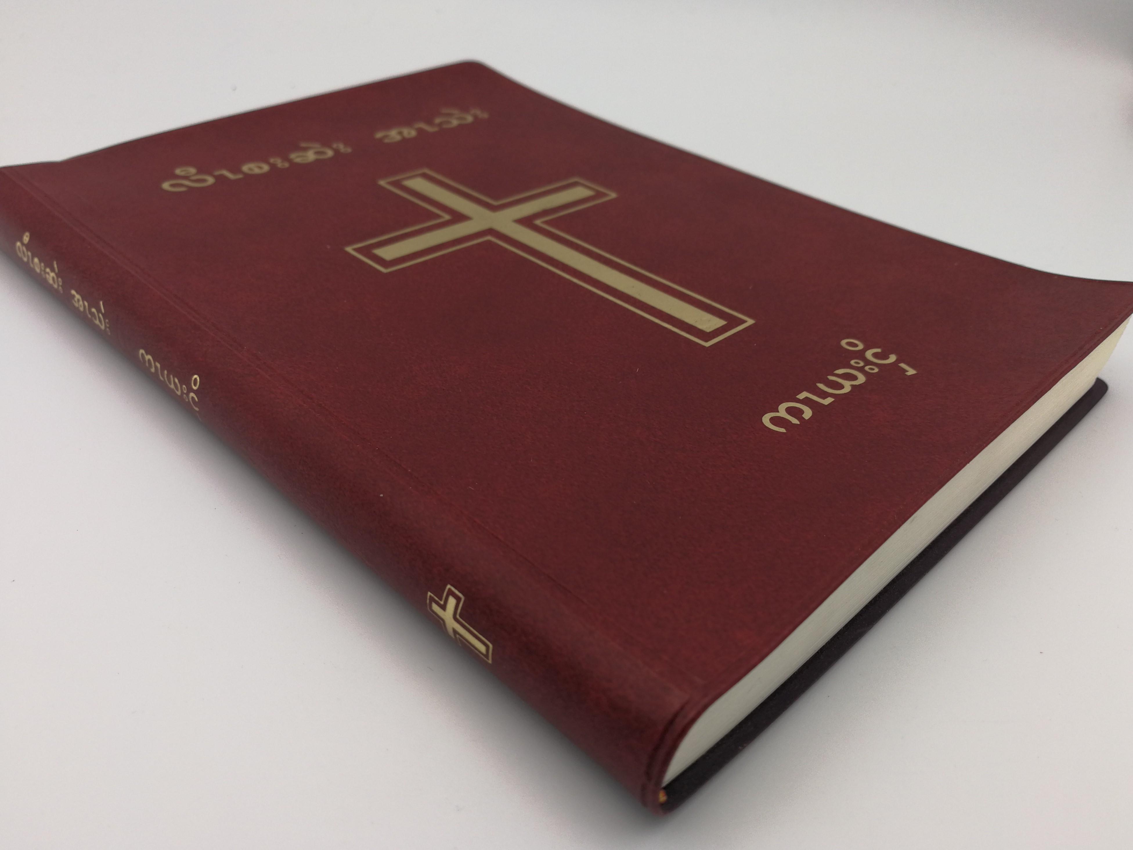 kayah-language-new-testament-2.jpg