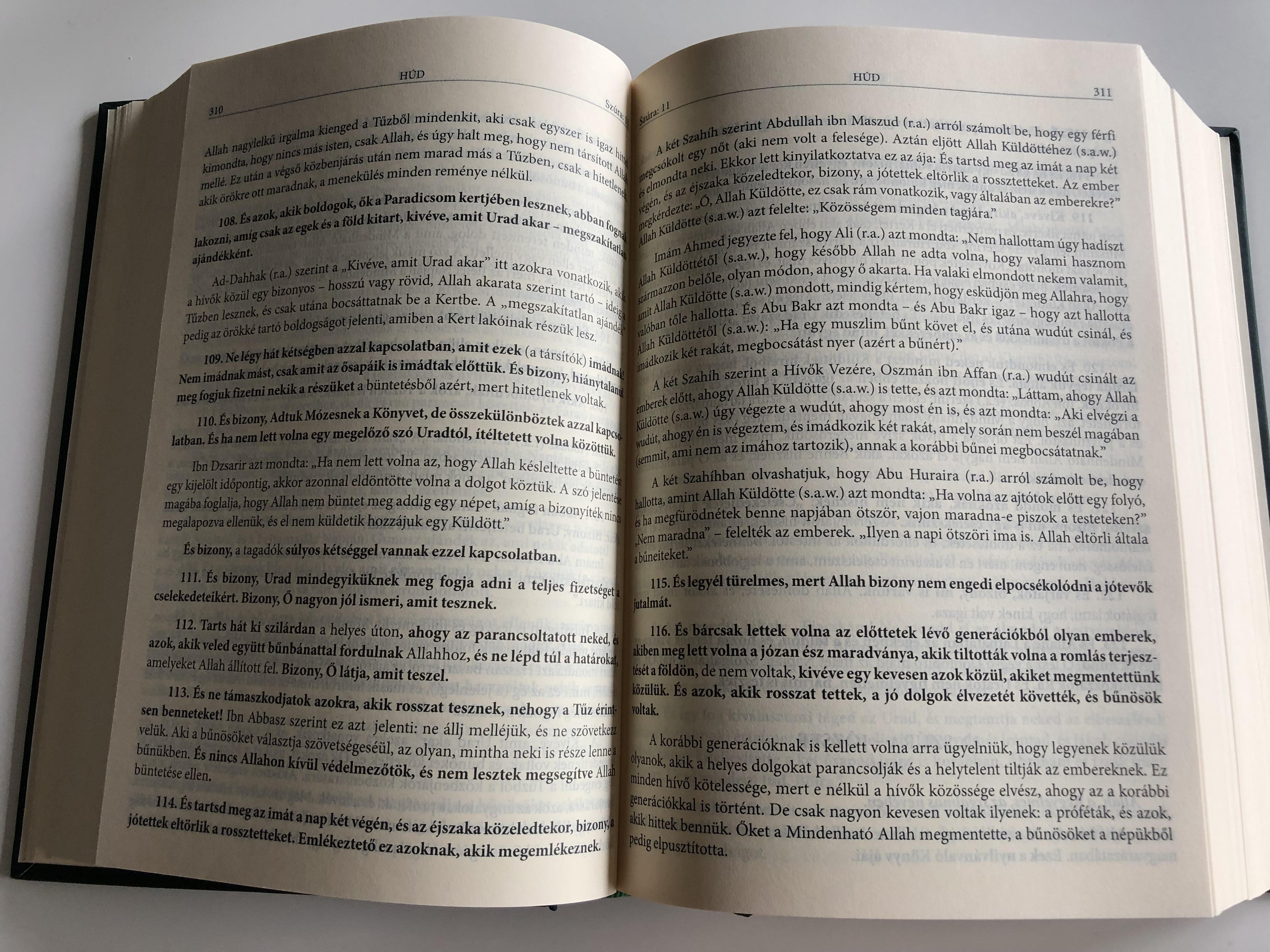 kegyes-kor-n-hungarian-interpretation-of-the-qur-an-a-pr-f-ta-v-ros-b-lm-a-f-nyes-medin-b-l-sz-rmaz-kor-n-alapj-n-hardcover-2010-hanif-iszl-m-11-.jpg