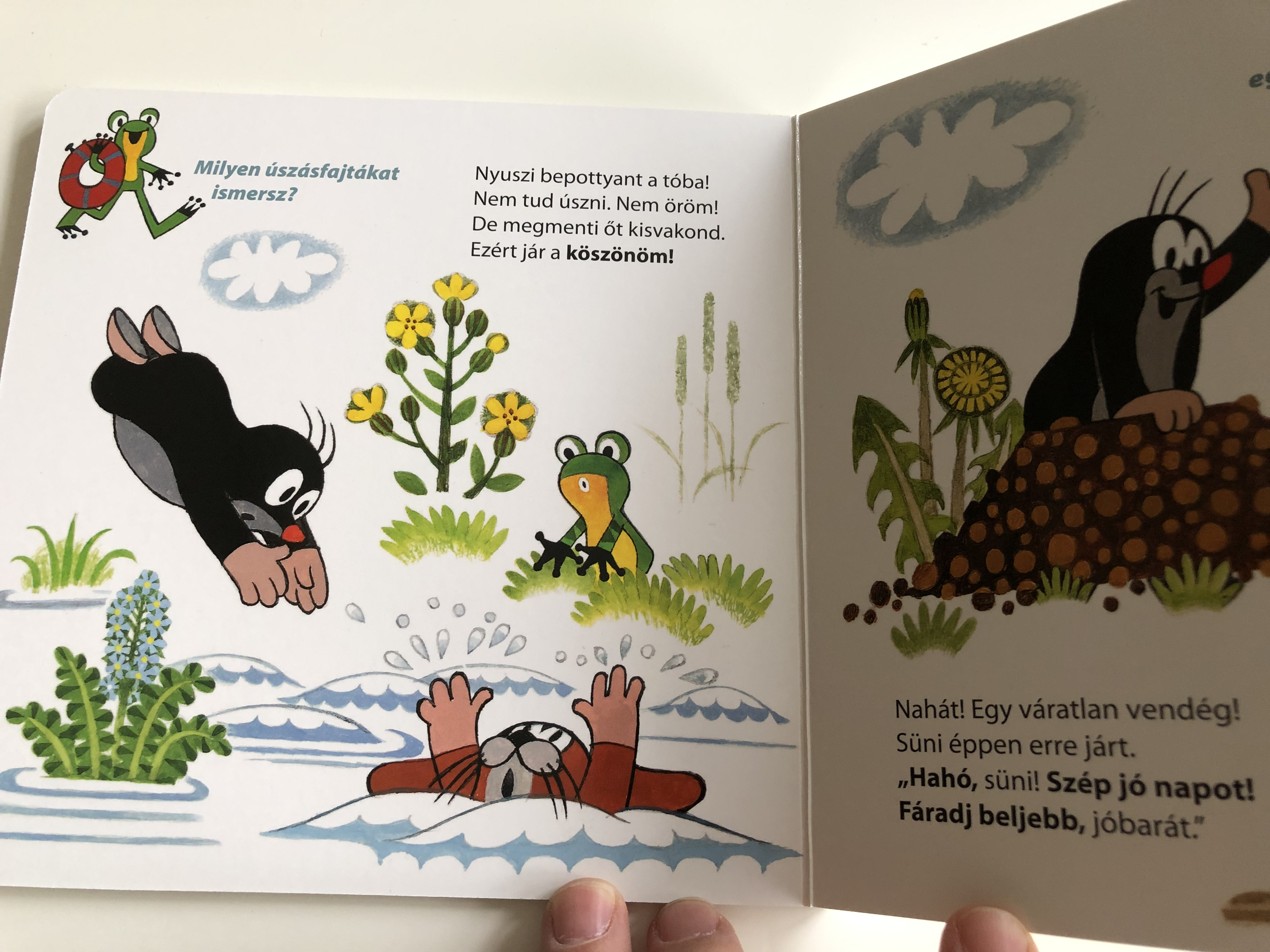kisvakond-s-az-illem-krtek-and-politeness-author-zden-k-miler-with-the-poems-of-romh-nyi-gnes-hungarian-language-edition-book-for-children-4-.jpg
