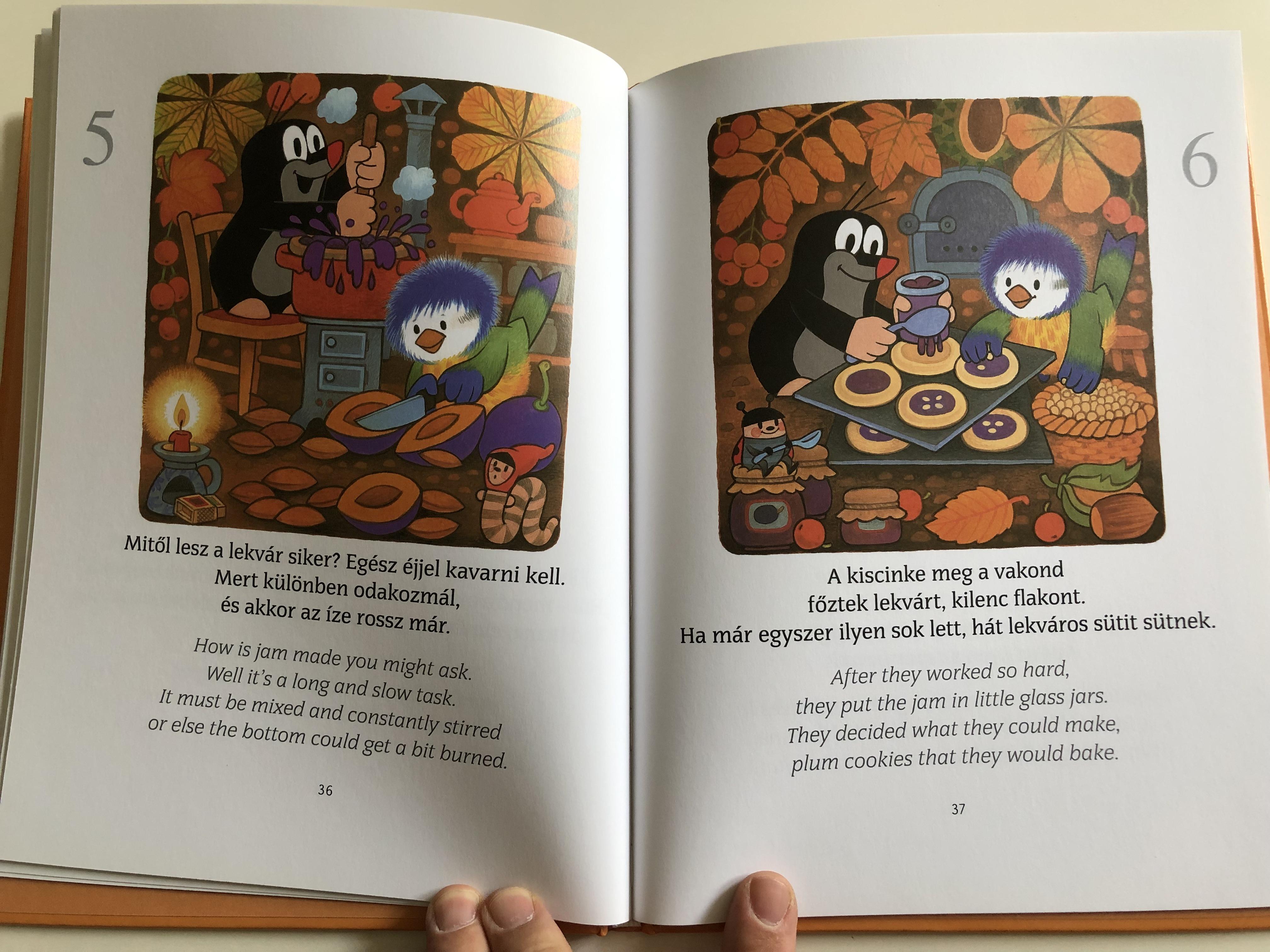 krtek-bilingual-english-hungarian-book-little-mole-s-adventure-from-spring-to-winter-8-.jpg