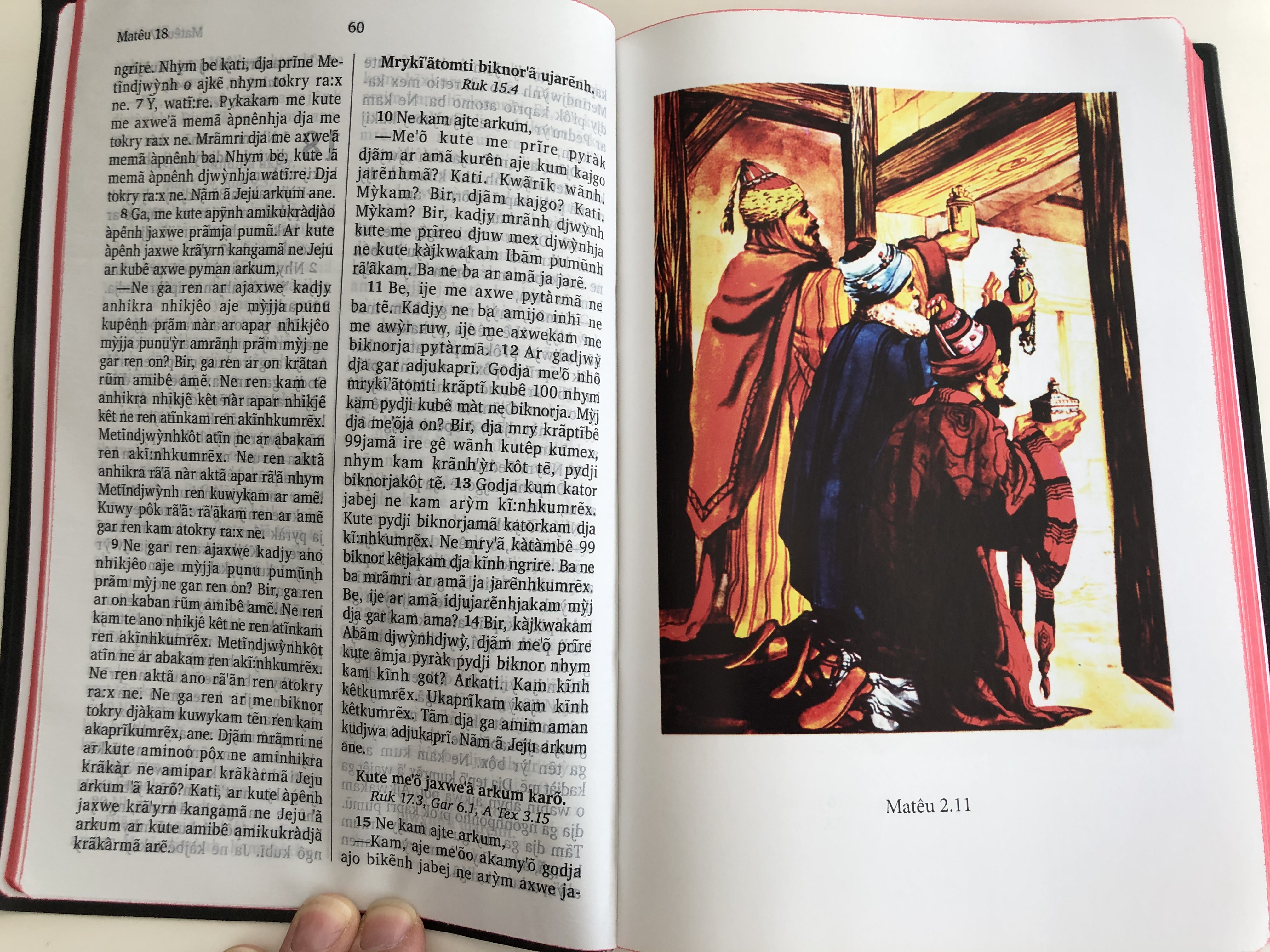 met-ndjw-nh-kute-mem-kab-n-ny-jar-nh-o-novo-testamento-the-new-testament-in-kayap-language-bible-society-brasil-2015-vinyl-bound-red-page-edges-3rd-edition-with-illustrations-dictionary-6-.jpg