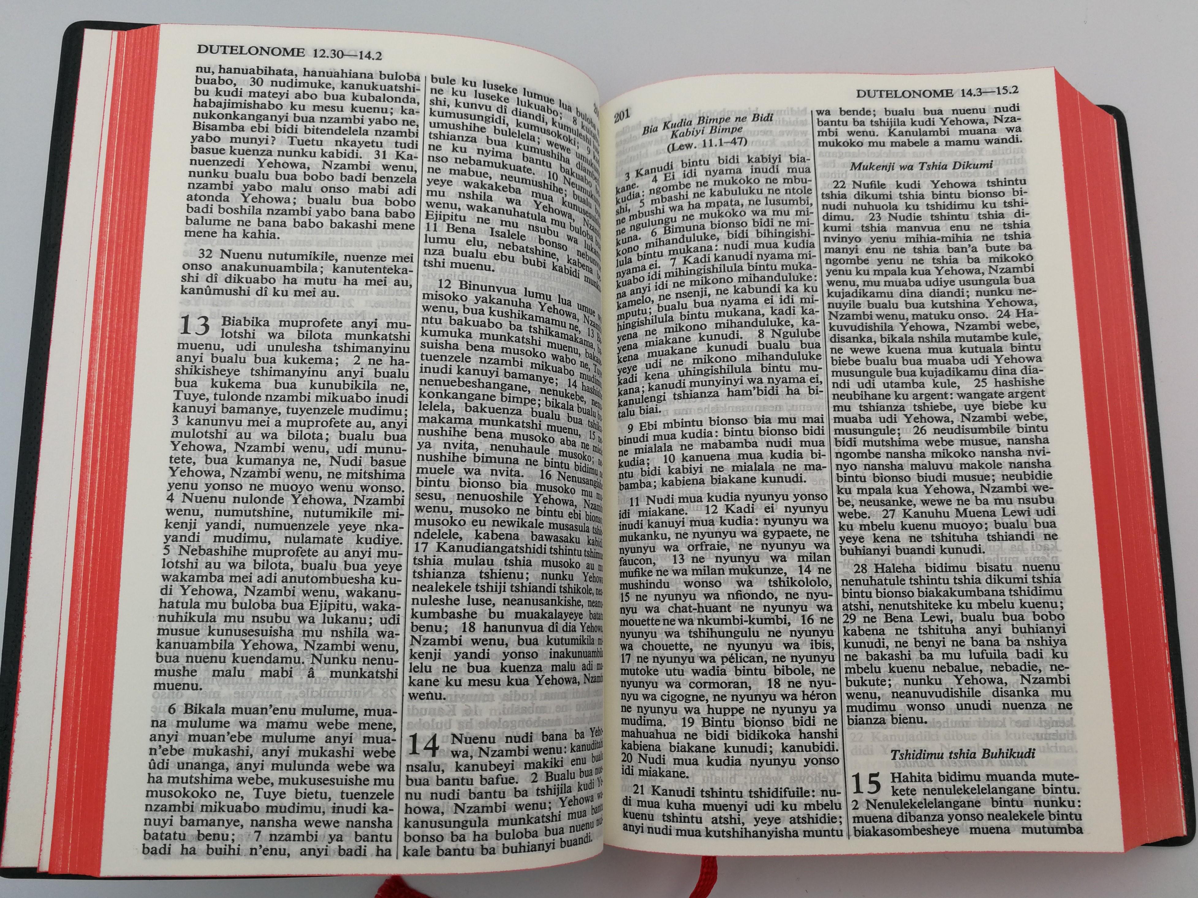 mukanda-wa-nzambi-tshiluba-language-holy-bible-8.jpg