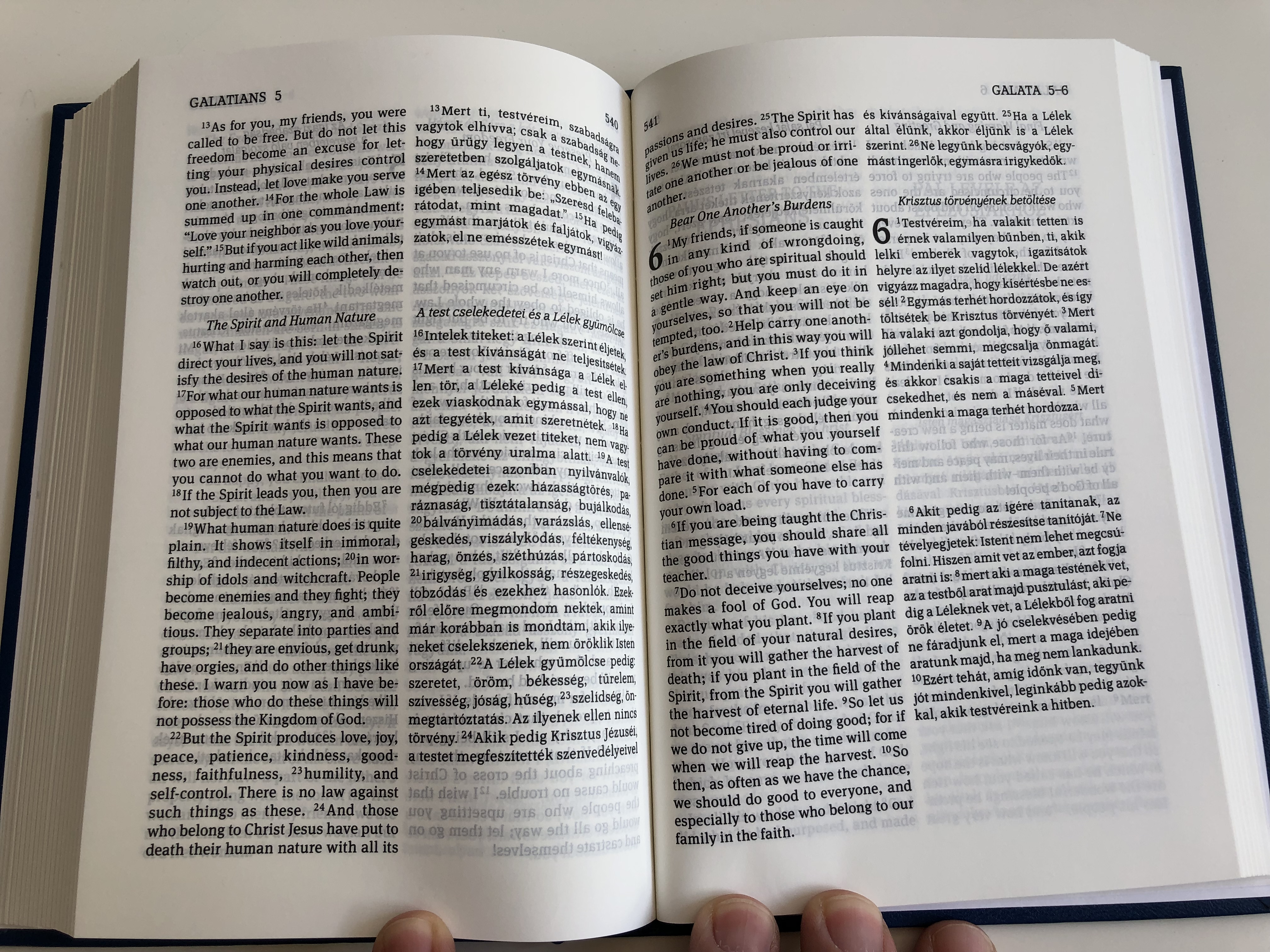 new-testament-gnt-jsz-vets-g-r-f-english-hungarian-bilingual-new-testament-parallel-column-text-hardcover-magyar-bibliat-rsulat-2019-8-.jpg