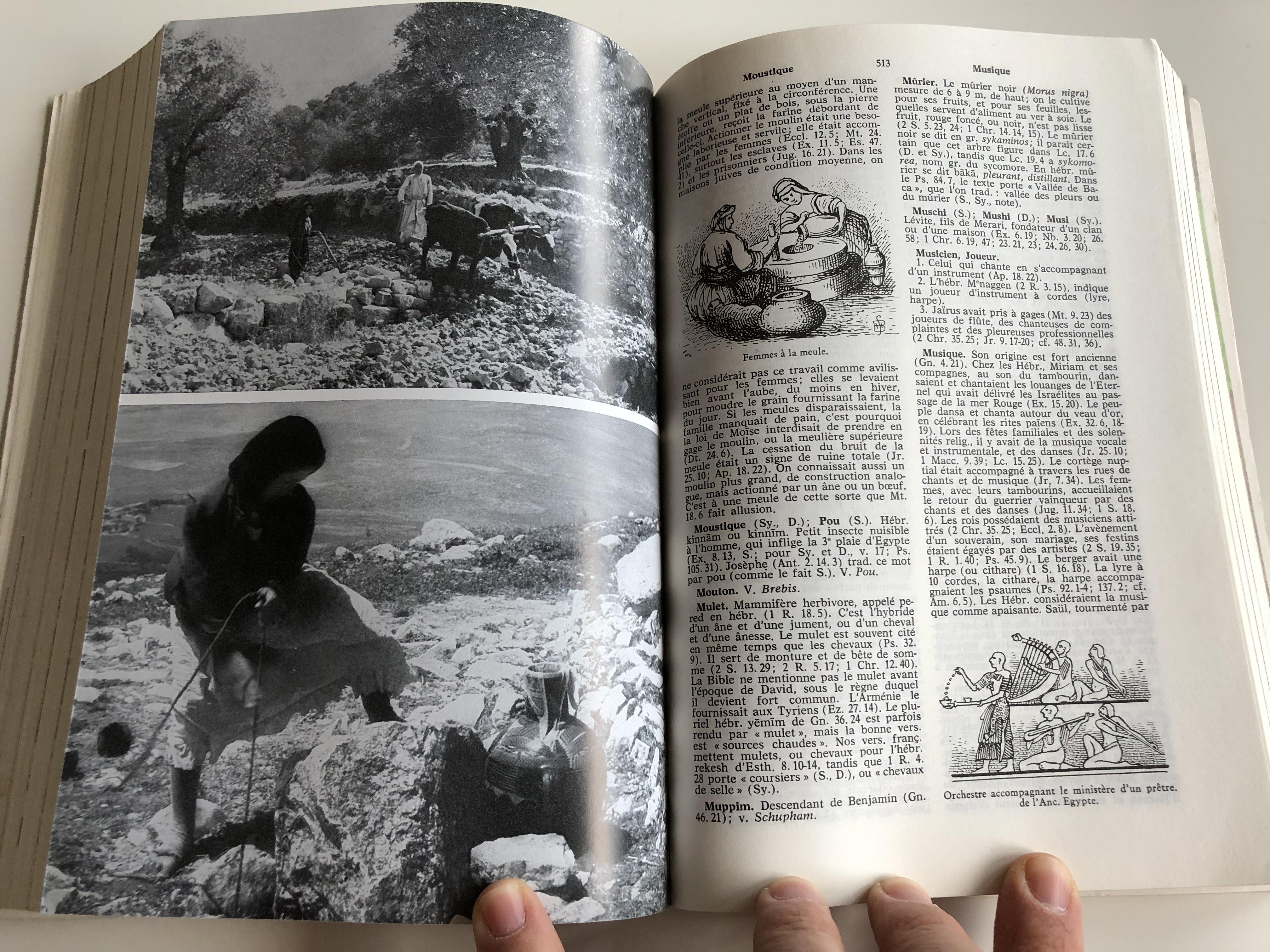 nouveau-dictionnaire-biblique-french-bible-dictionary-10-.jpg