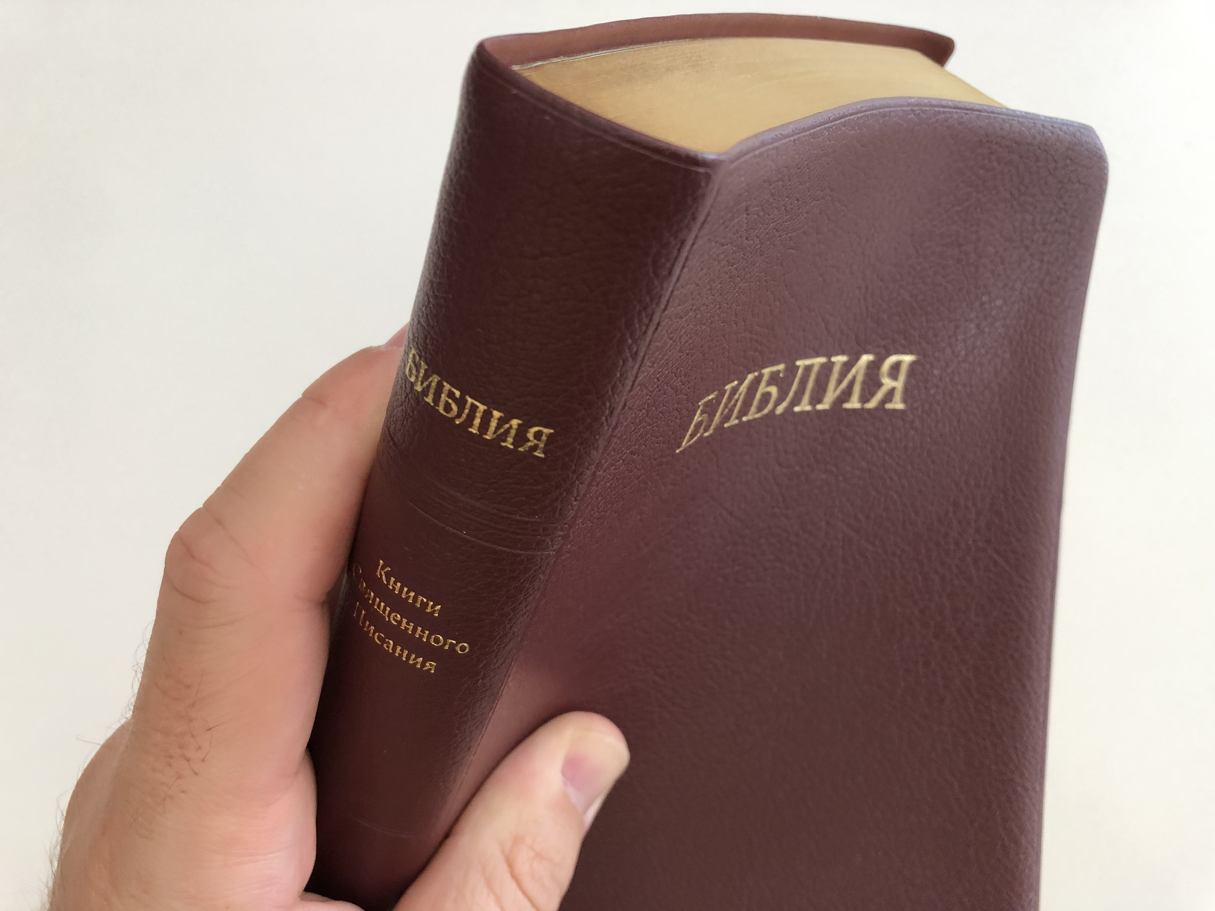 russian-language-holy-bible-synodal-translation-ukrainian-bible-society-2012-vinyl-bound-golden-edges-thumb-index-19-.jpg