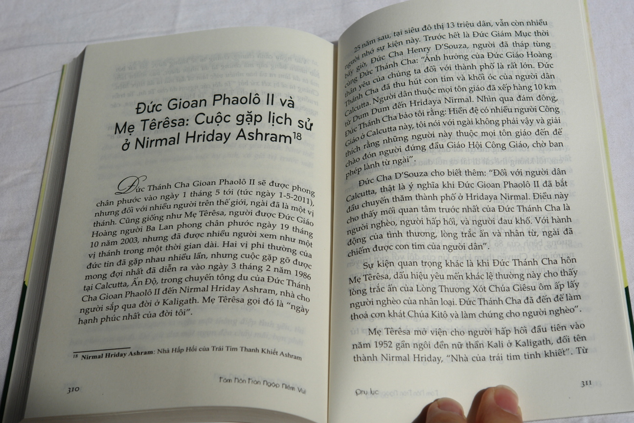 t-m-h-n-tr-n-ng-p-ni-m-vui-vietnamese-edition-of-heart-of-joy-mother-theresa-9.jpg
