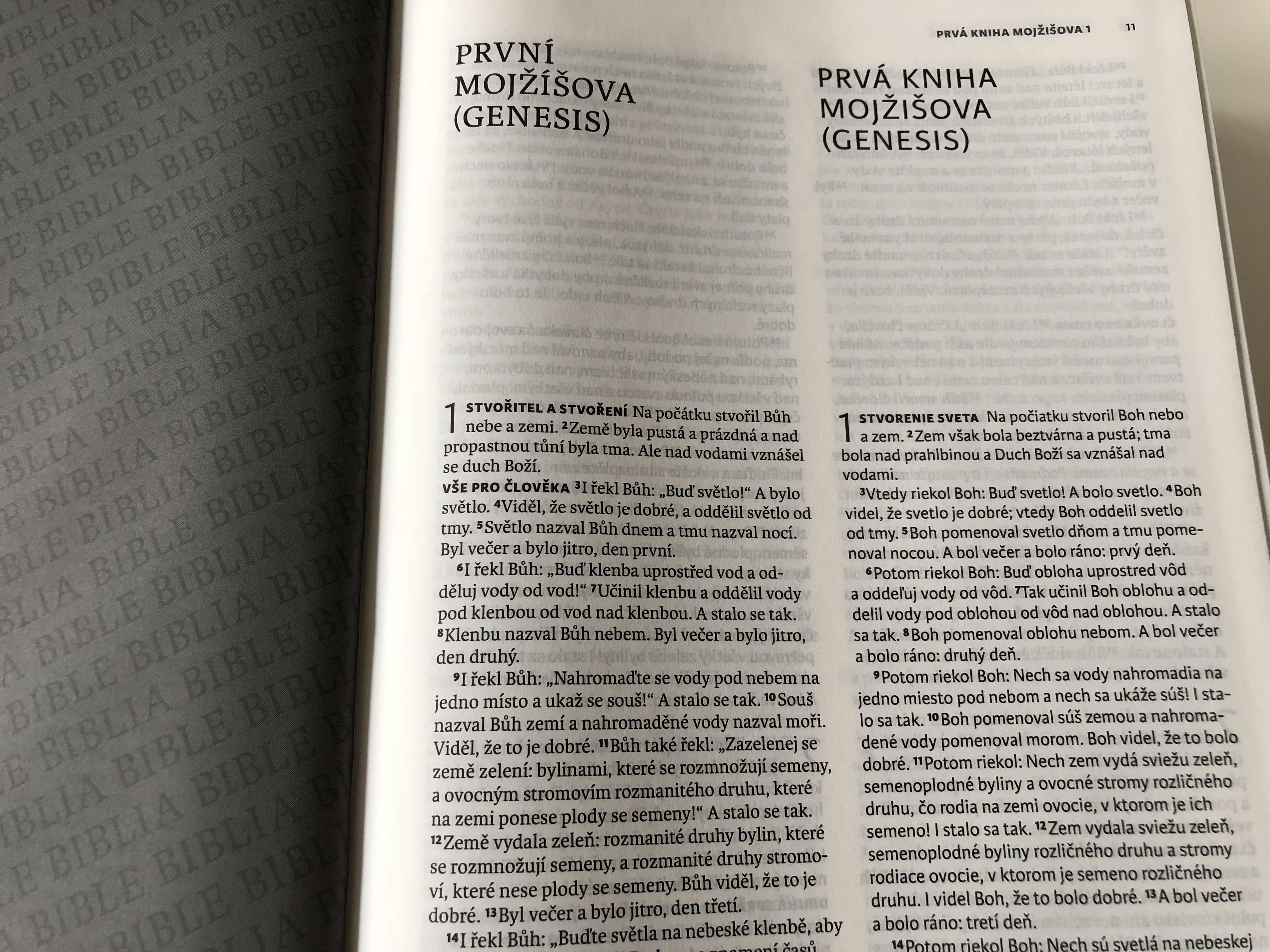 the-czech-slovak-bible-bilingual-13-.jpg