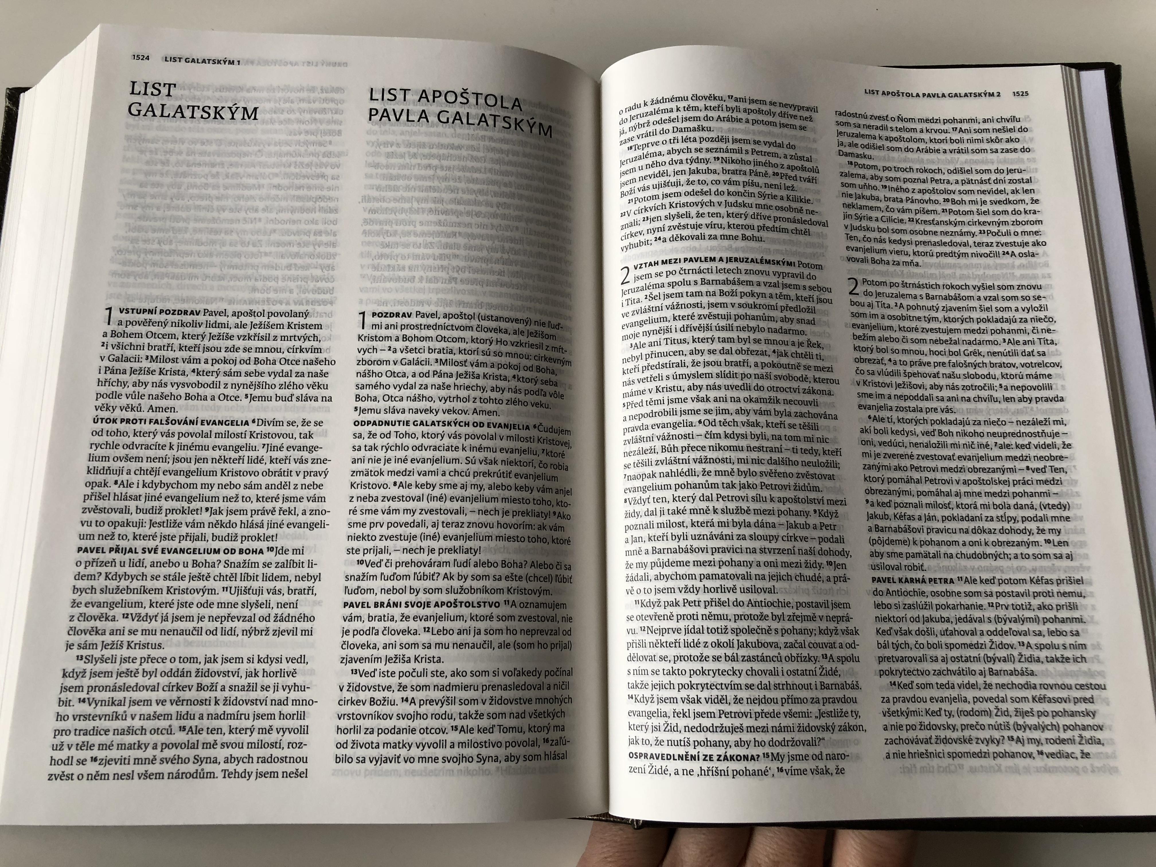 the-czech-slovak-bible-bilingual-20-.jpg