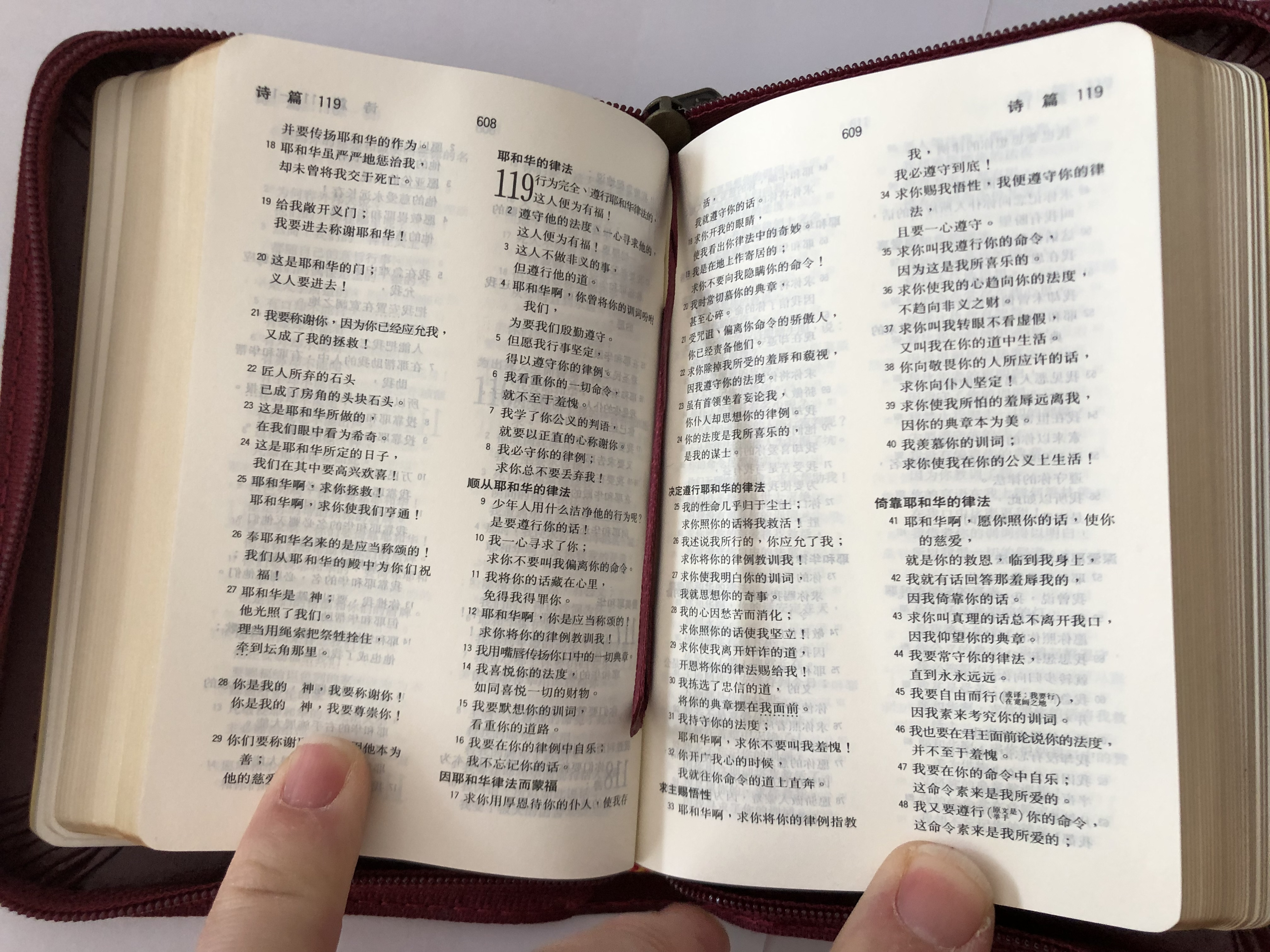 the-holy-bible-chinese-union-version-new-punctuation-maroon-leather-bound-golden-edges-zipper-cunpss-37z-m-bsm-2006-9-.jpg