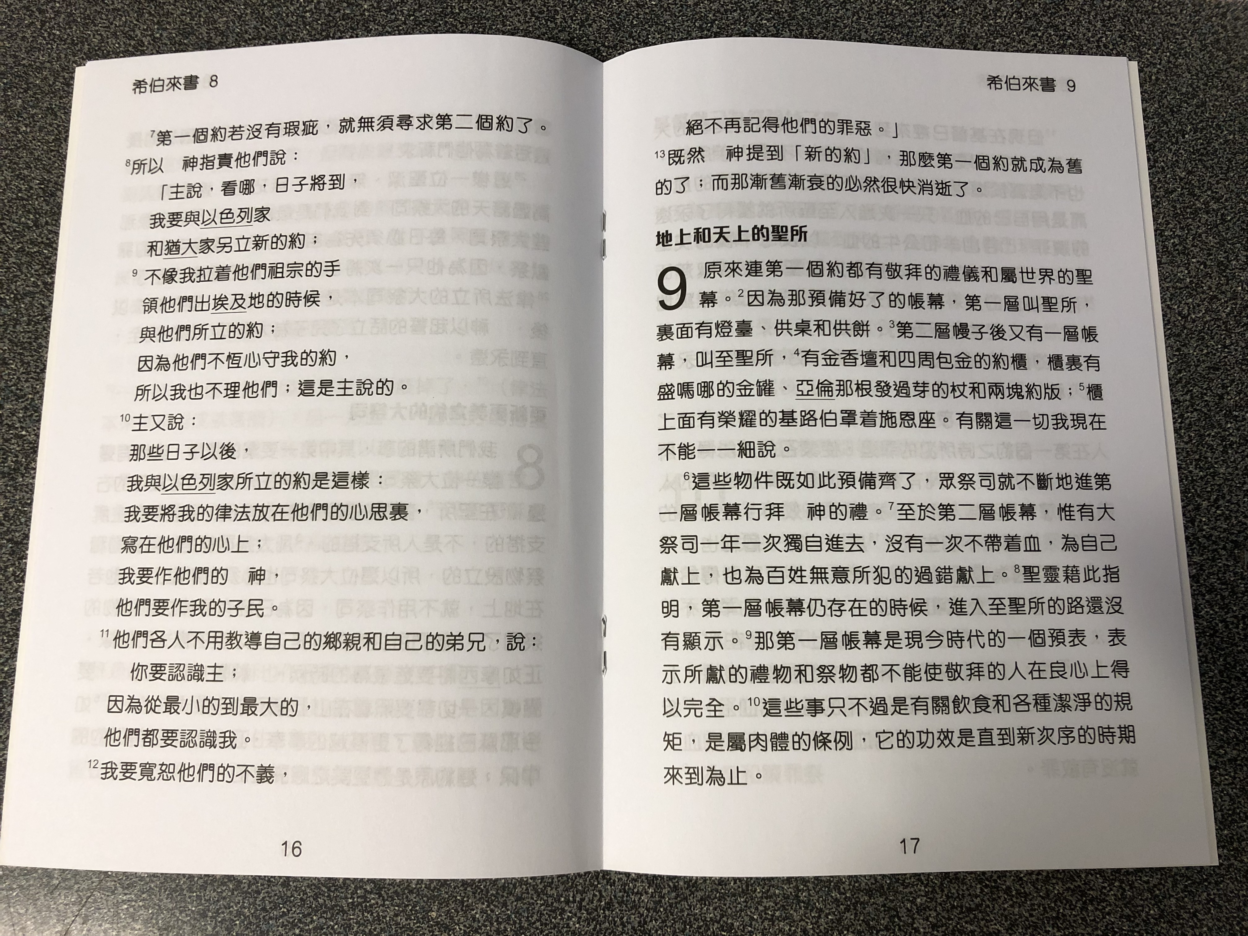 the-letter-to-the-hebrews-in-chinese-language-super-large-print-edition-2-.jpg