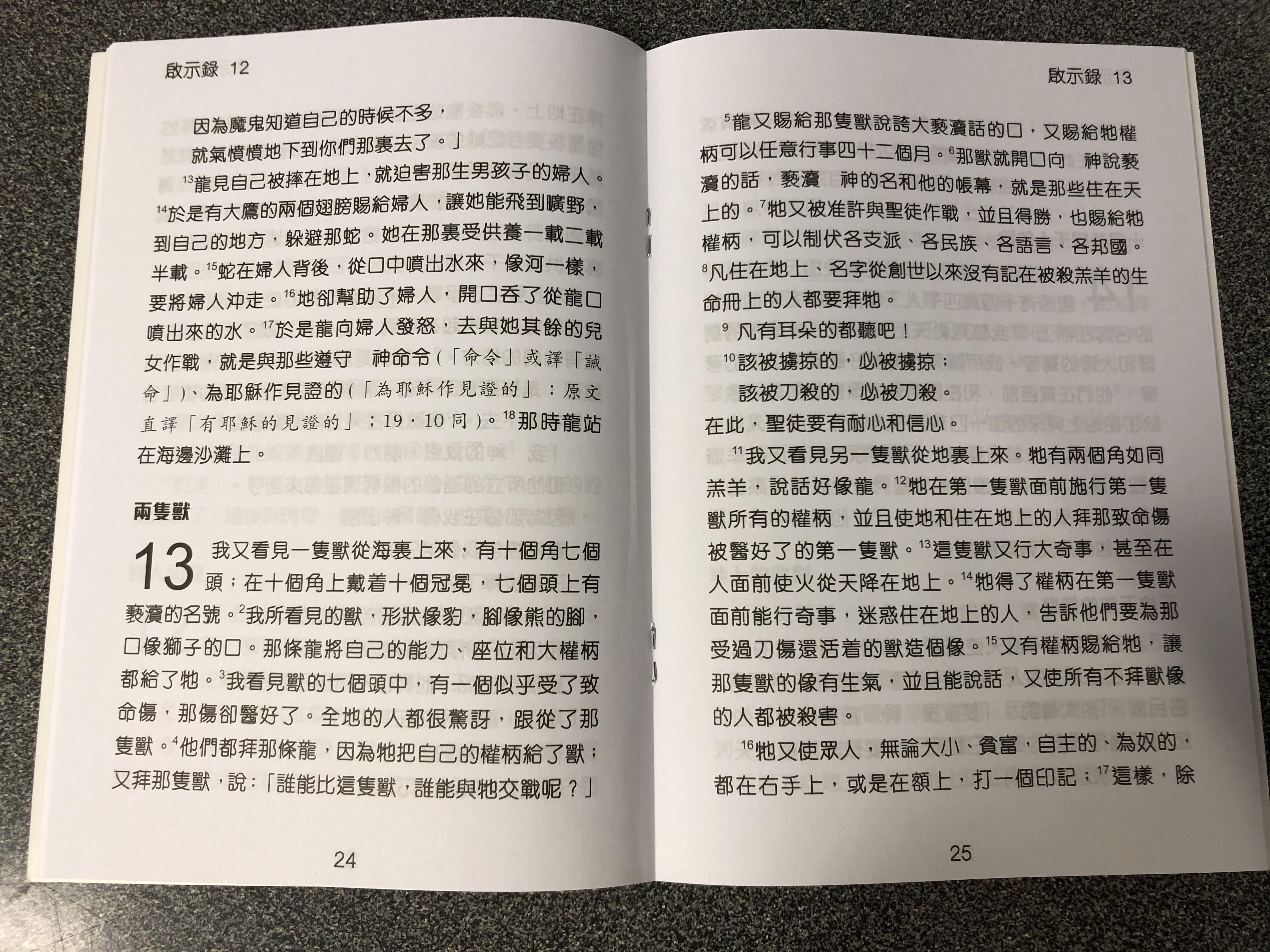 the-revelation-to-john-in-chinese-language-super-large-print-4-.jpg