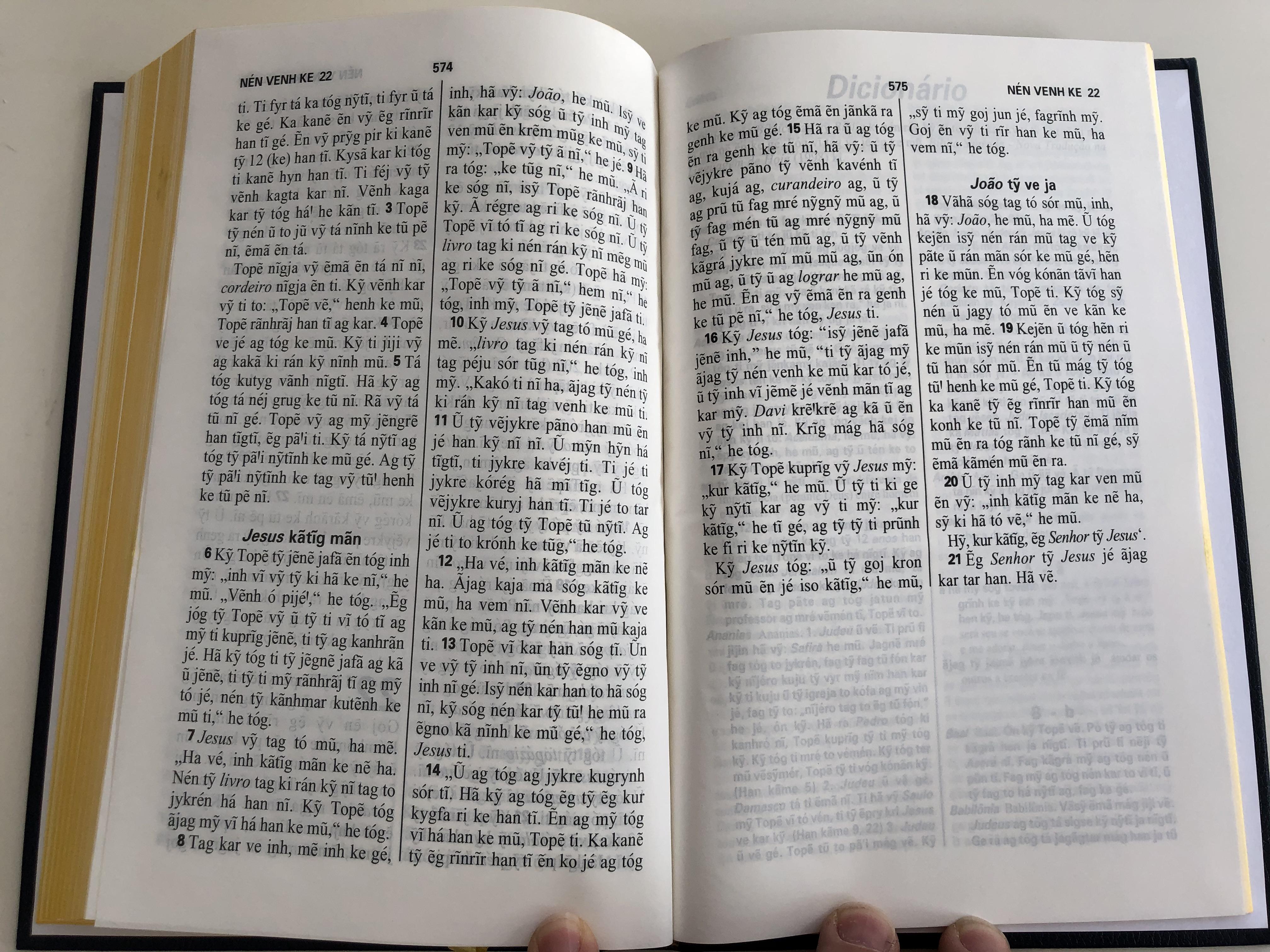 top-v-r-o-novo-testamento-the-new-testament-in-kaingang-language-bible-society-brasil-2005-hardcover-2nd-edition-11-.jpg