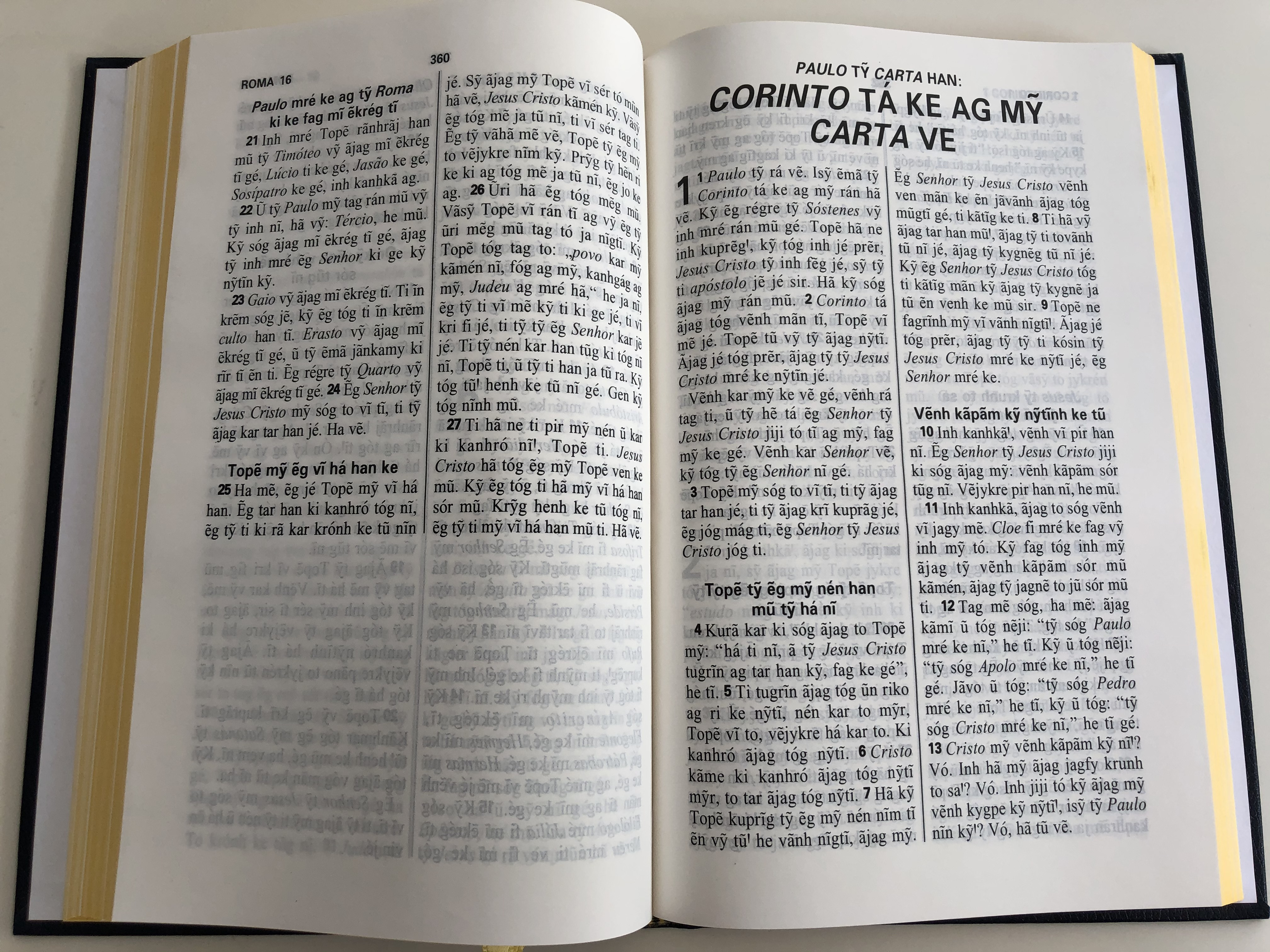 top-v-r-o-novo-testamento-the-new-testament-in-kaingang-language-bible-society-brasil-2005-hardcover-2nd-edition-8-.jpg