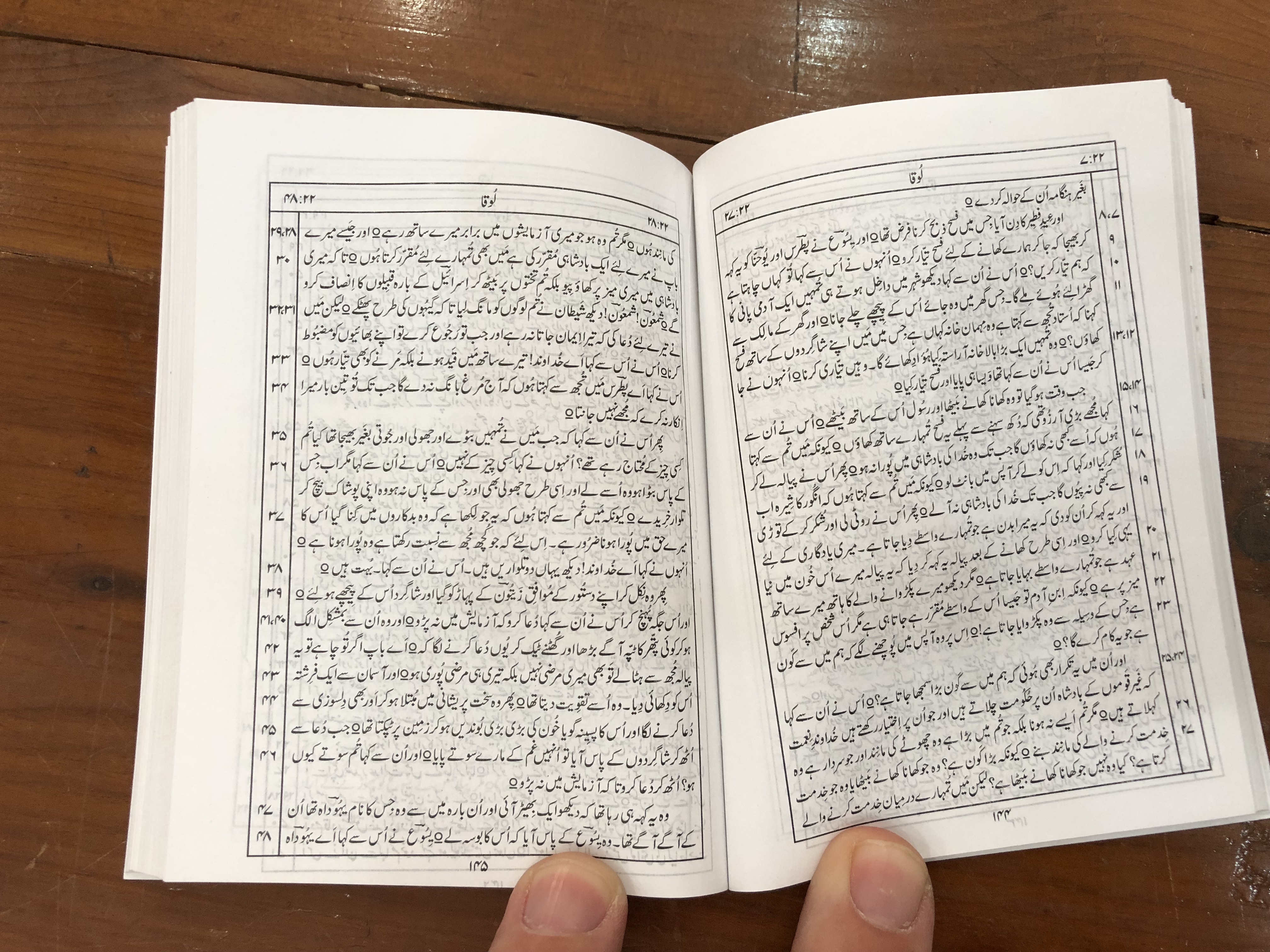 urdu-new-testament-pocket-size-vinyl-bound-pakistan-bible-society-2014-6-.jpg