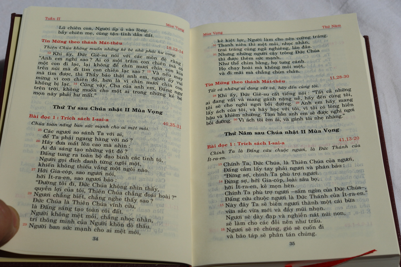 vietnamese-catholic-missal-the-word-of-god-in-holy-mass-7.jpg