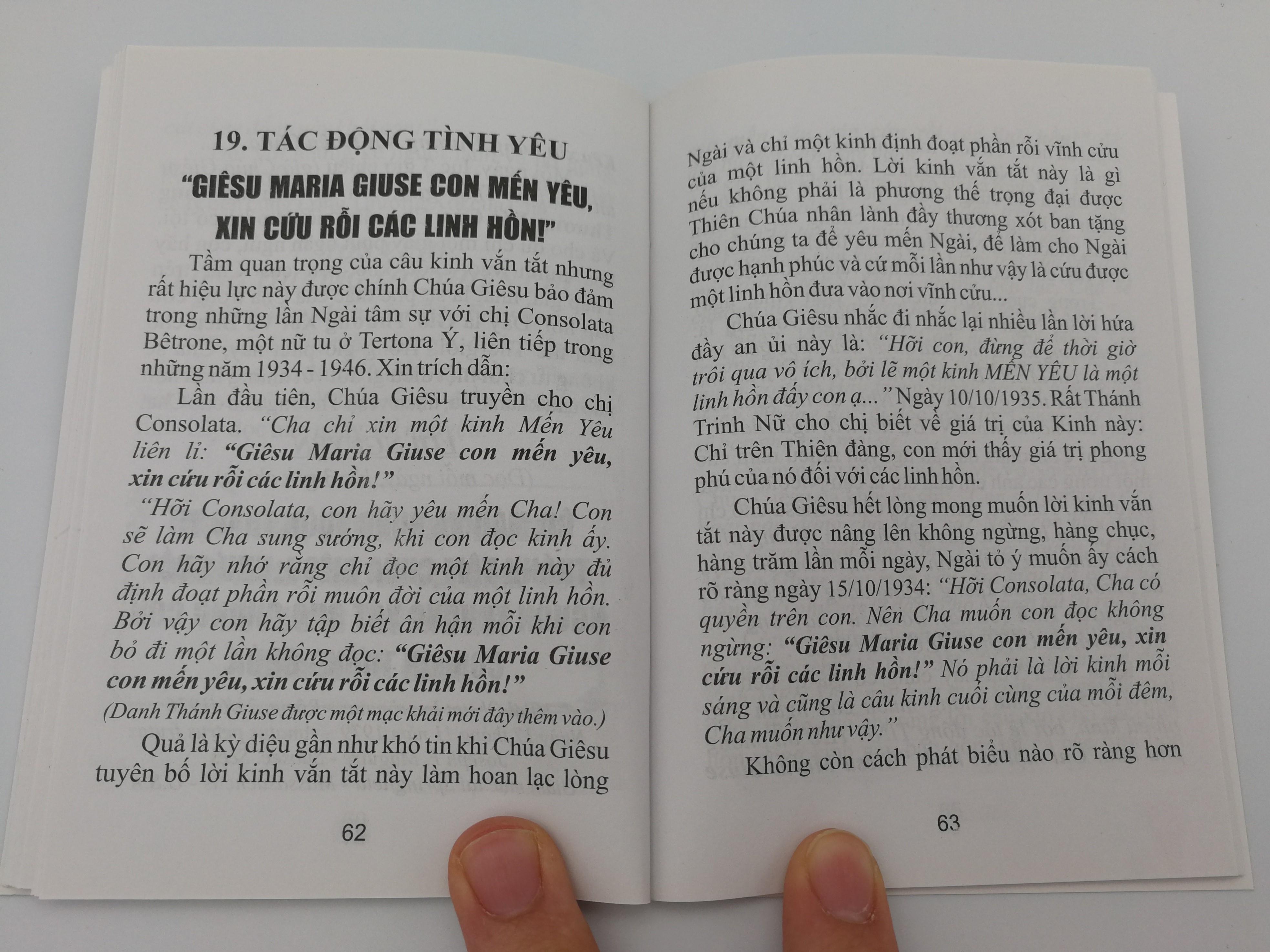 vietnamese-language-roman-catholic-prayer-book-daily-prayers-9.jpg