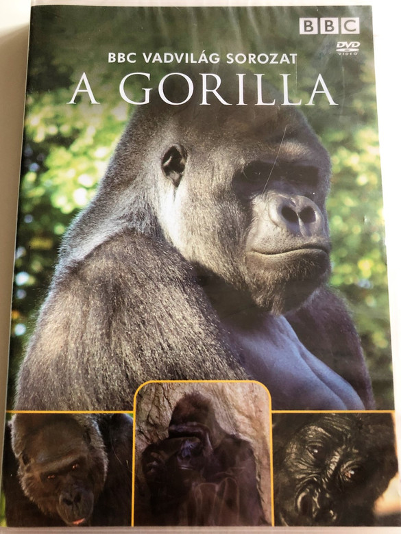 A Gorilla / Gorillas: On the Trail of King Kong / BBC Wildlife Series / Narrated by Sir David Attenborough / DVD 2002 / BBC Vadvilág Sorozat (5996473005220)