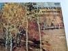 Csajkovszkij - IV. Szimfónia Op. 36 / A Szovjet Rádió Szimfonikus Zenekara / Gennagyij Rozsgyesztvenszkij / HUNGAROTON LP STEREO / SLPX 12145