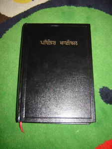 Punjabi Holy Bible by American Bible Society