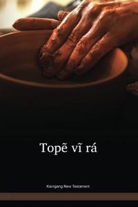 Kaingang New Testament / Topẽ Vĩ Rá - O Novo testamento / Paperback 2017