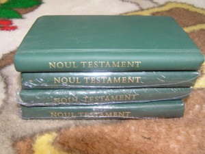 Romanian Green Pocket New Testament / Rumanian Noul Testament in limba Romana
