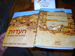 Hebrew Colorful Children's Bible / The TESTIMONY Volume 1 - The Torah for You...