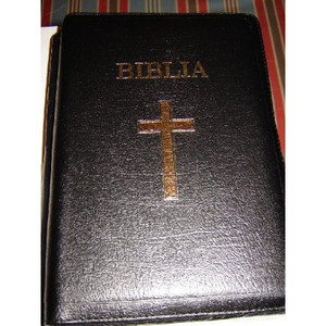 Limited Edition Leather Bible in Romanian / Biblia 087TI / Huge 18.5X27.5 cm ...