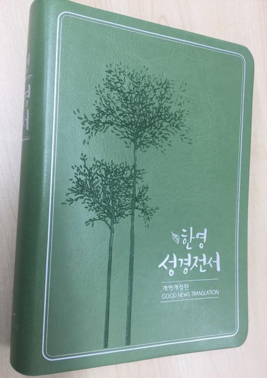 Korean-English Bible 한영 성경전서 / Good news Translation / New Korean Revised Version / Green Leather bound, silver page edges / Korean Bible Society 2017 / GNT KRV / NKG77EDI (9788941230342)