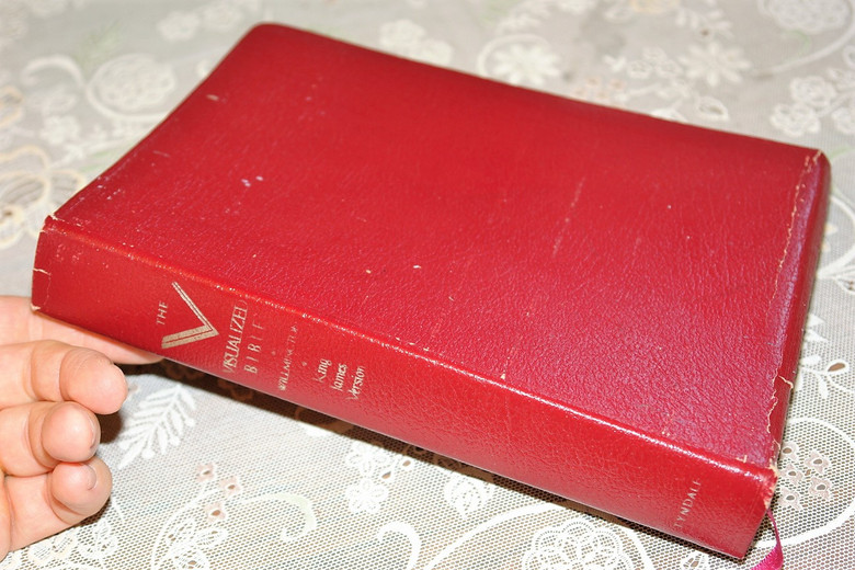 The Visualized Bible - King James Version / Supplementary Material by Harold L. Willmington / Burgundy Leather Bound (084237857X)