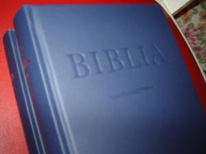 Hungarian Protestant Bible / Hungarian Bible Midd-size / Ujforditasu Magyar B...
