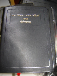 Hindi New Testament with Psalms and Proverbs / Hindi - O.V. Re-edited / 20C 0...