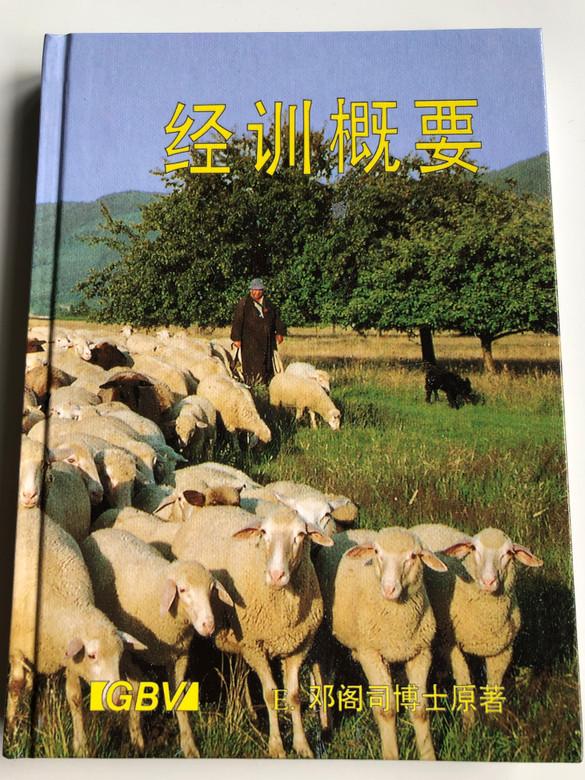 Chinese language Biblical Guide / Gute Botschaft Verlag 1998 / GBV 19663 S / Hardcover (GBV19663S)