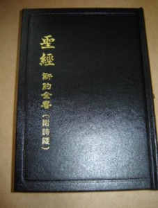 Chinese New Testament with Psalms and Proverbs / Chinese Union Version (Shen ...
