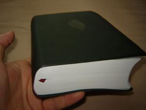 Chinese Spirit Filled Study Bible / Pentecostal Bible